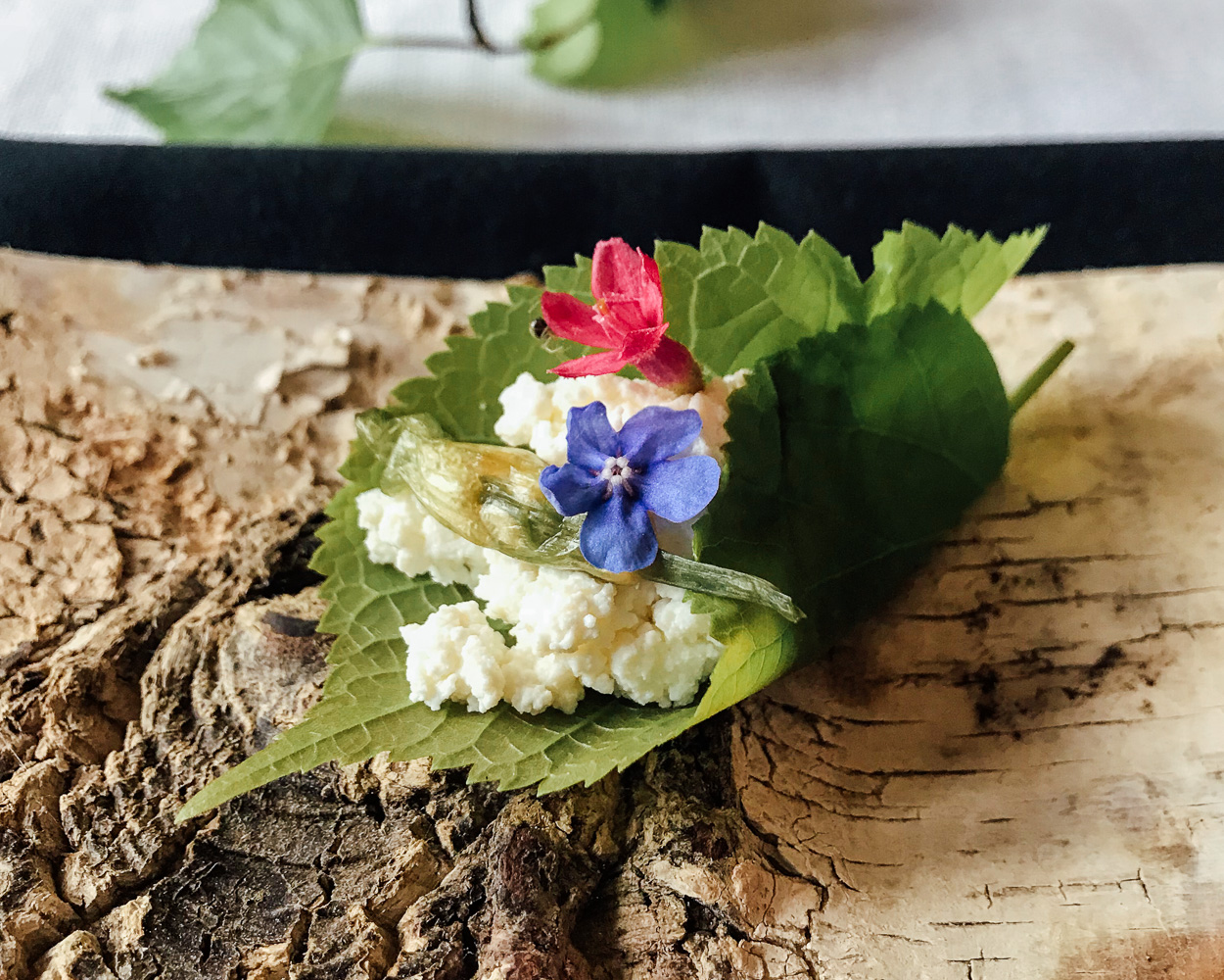 Lime leaf with cottage cheese and pickled garlic from Buck and Birch