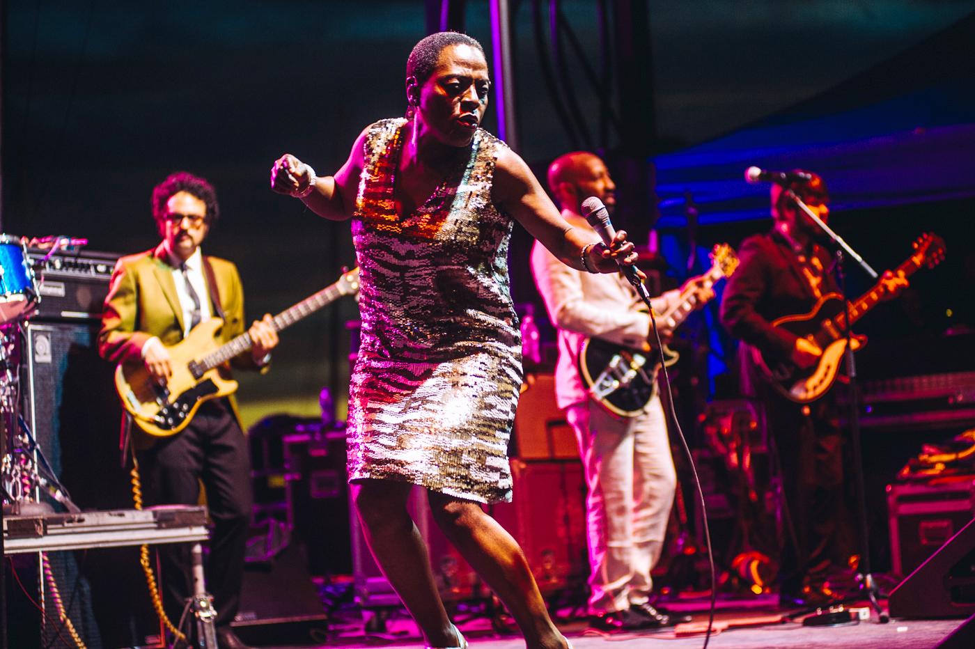 Lowdown Hudson Blues Festival 2014