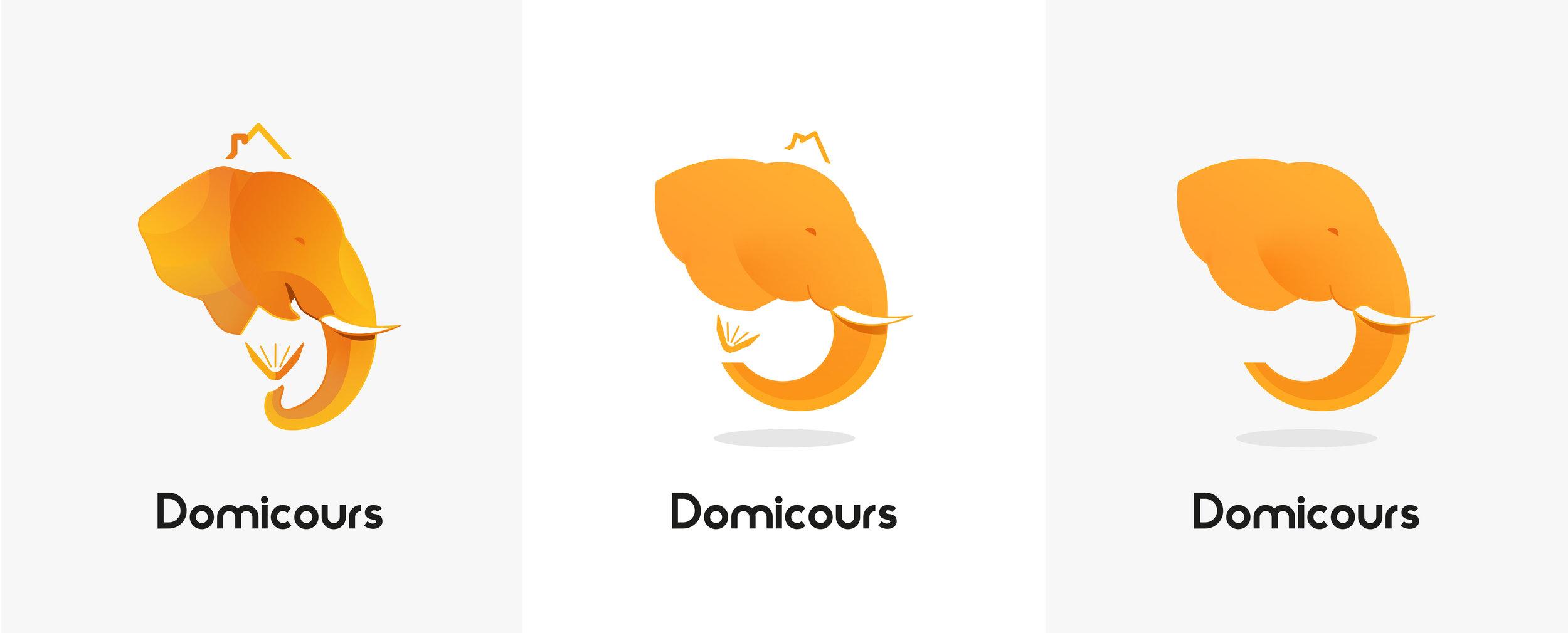 logoDomicoursV2.jpg