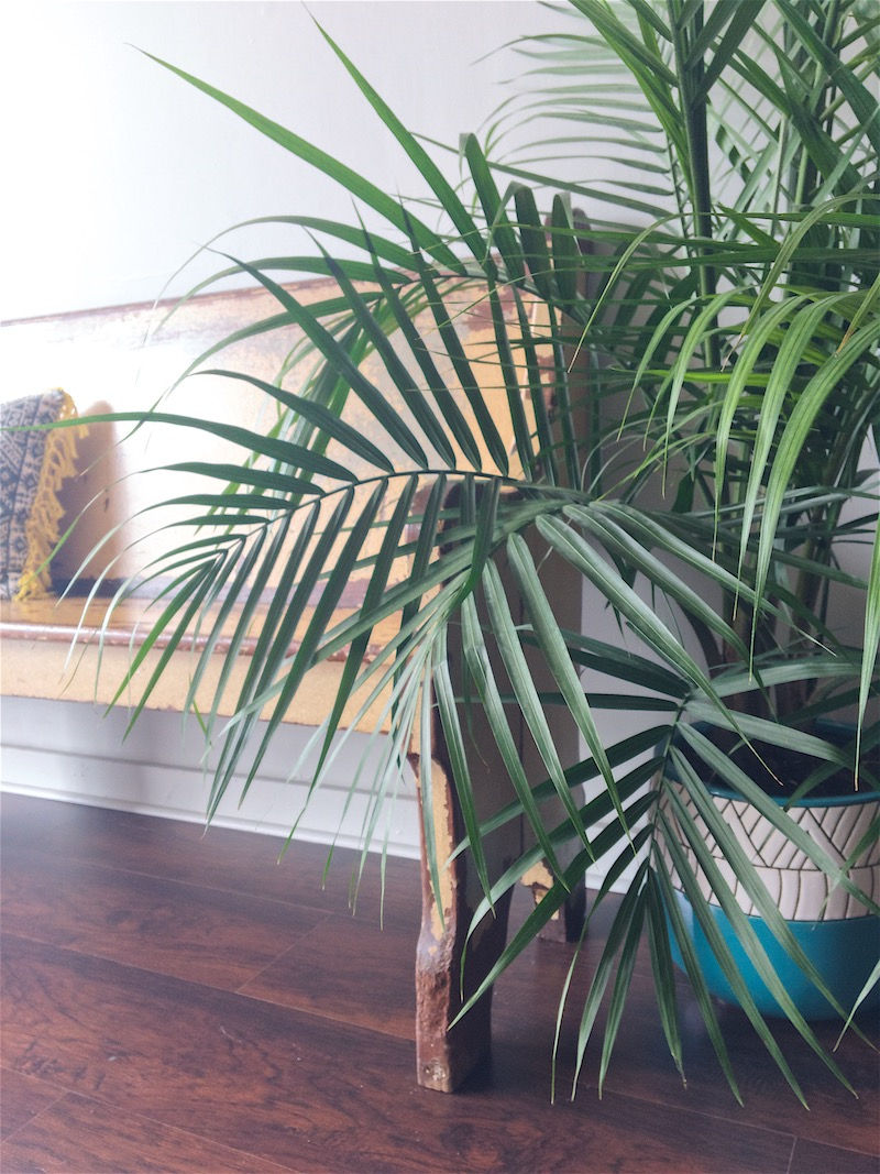The details and natural light at  Gorham Yoga Company