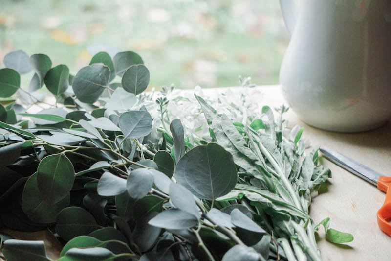 The smell of eucalyptus- it's one of my favorite plants to have in the home