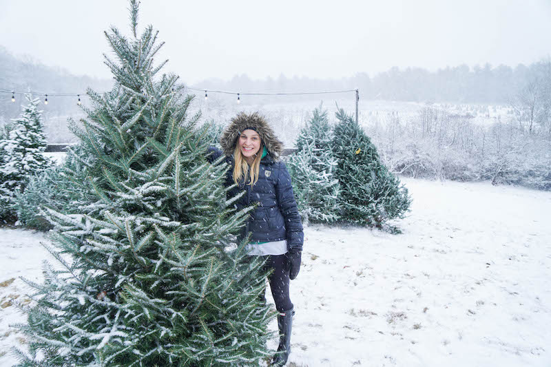 Finding a perfect Christmas tree