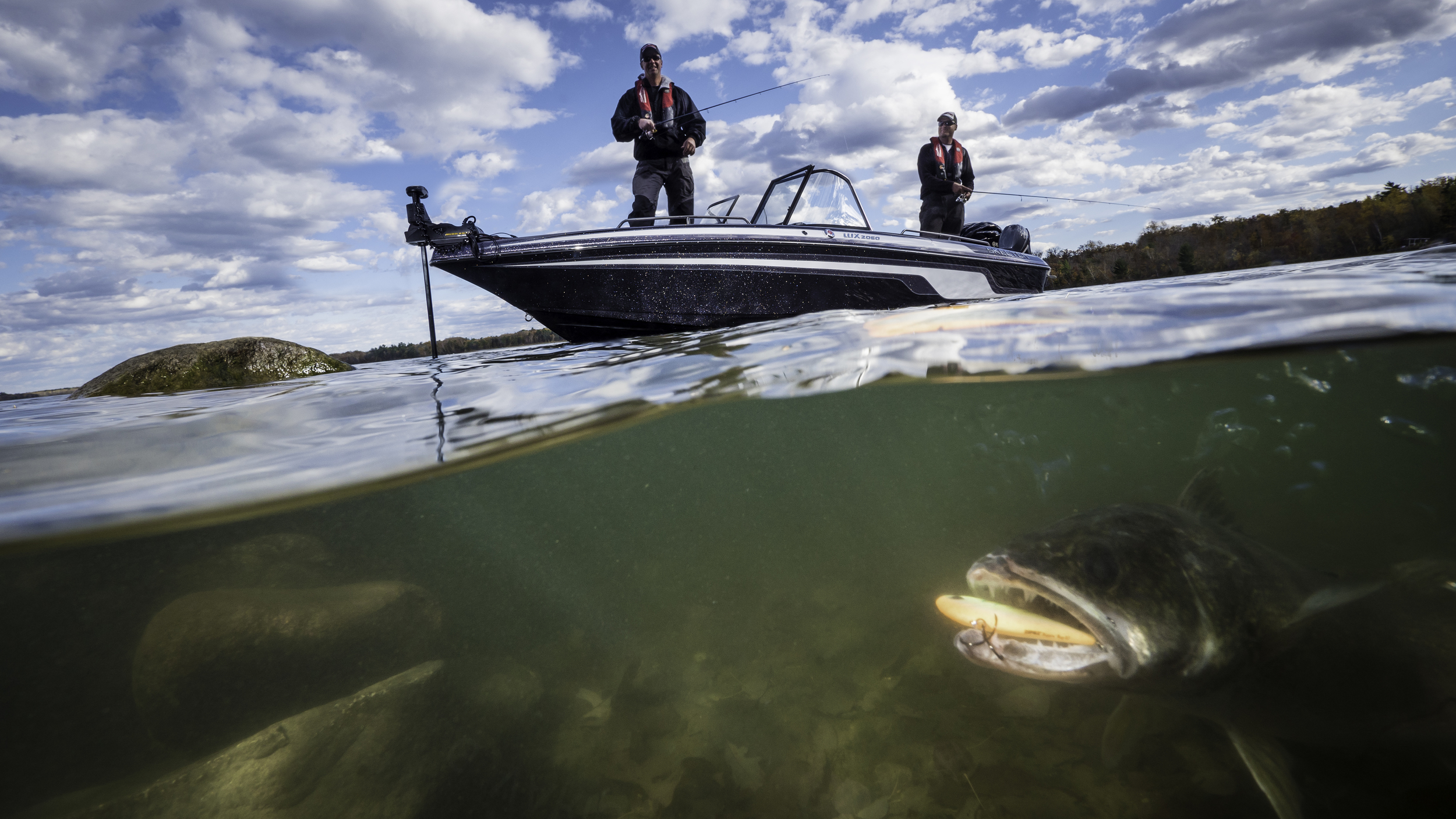Split Level Walleye.jpg