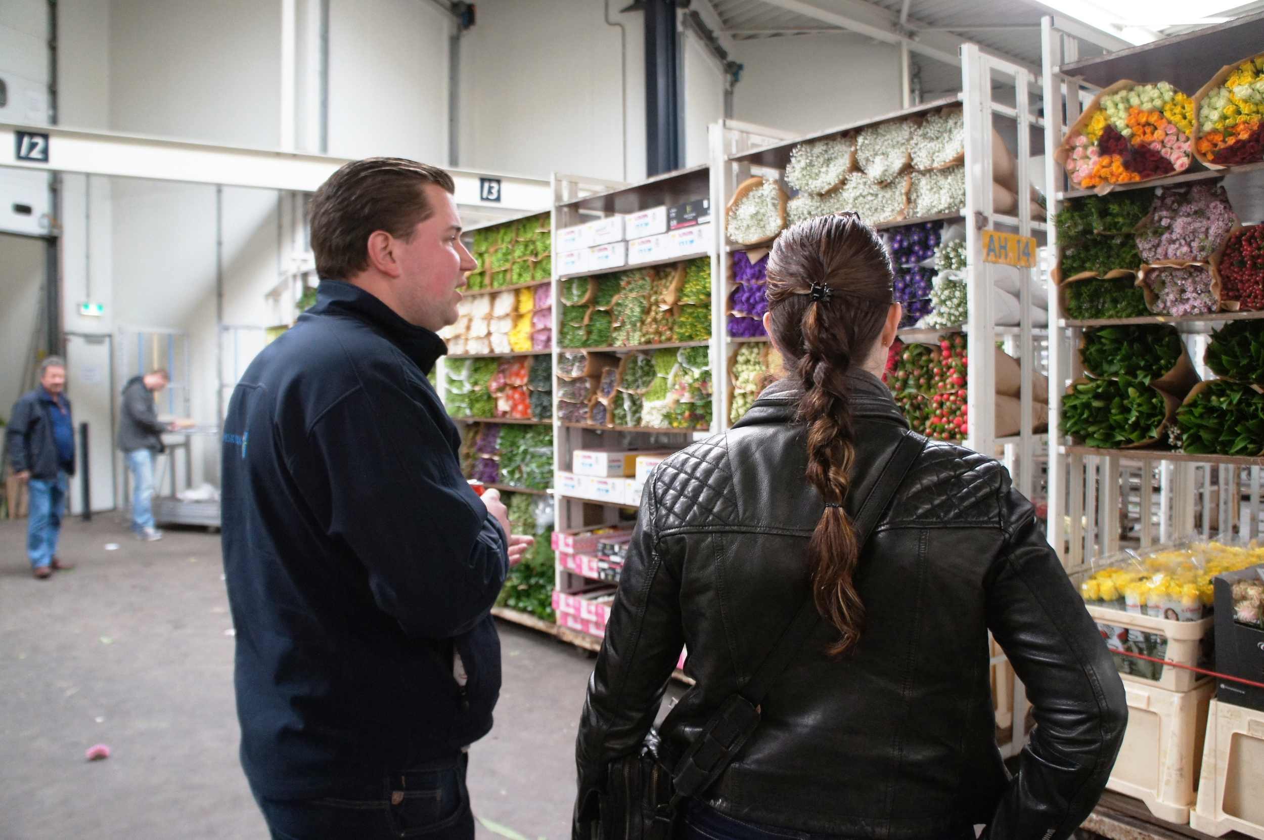 Two people looking at plant trollies full of flowers at flower market in Holland