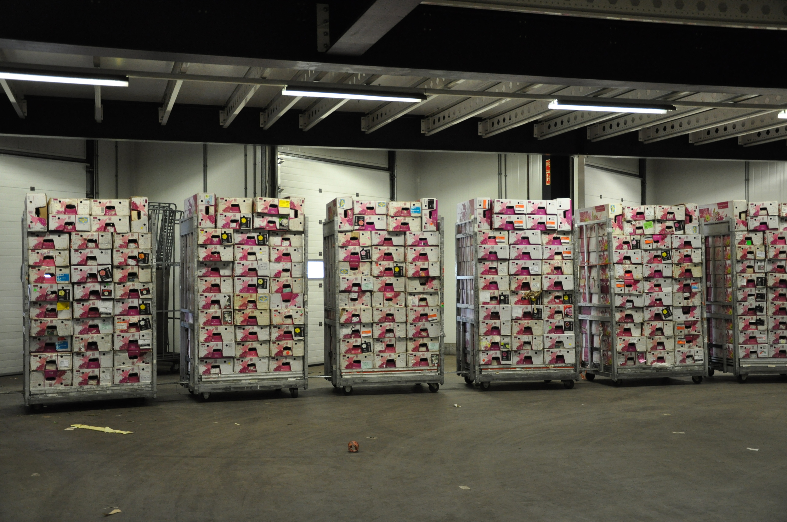 flower boxes stacked on plant trolleys