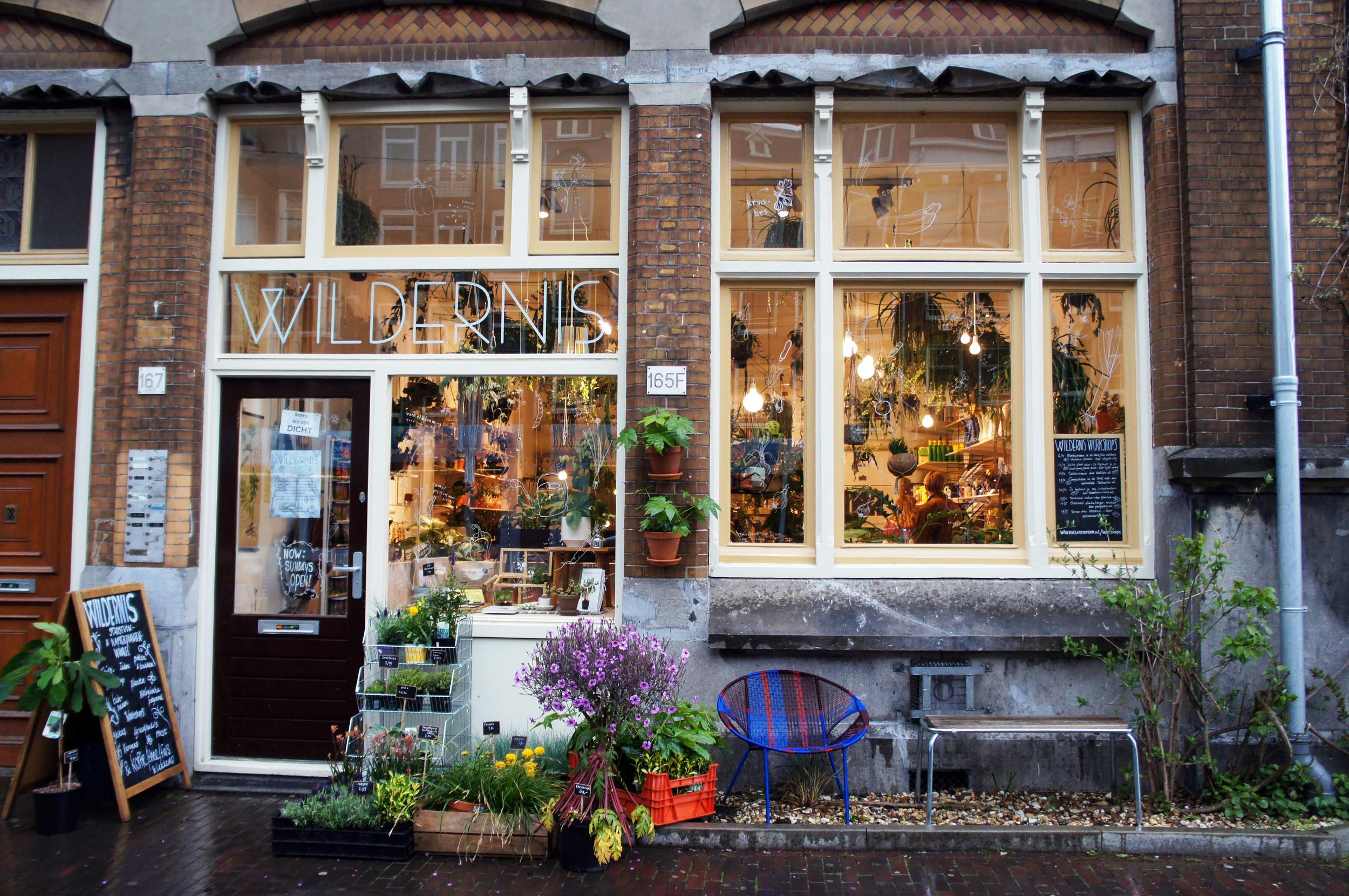 Wildernis plant shop in Amsterdam