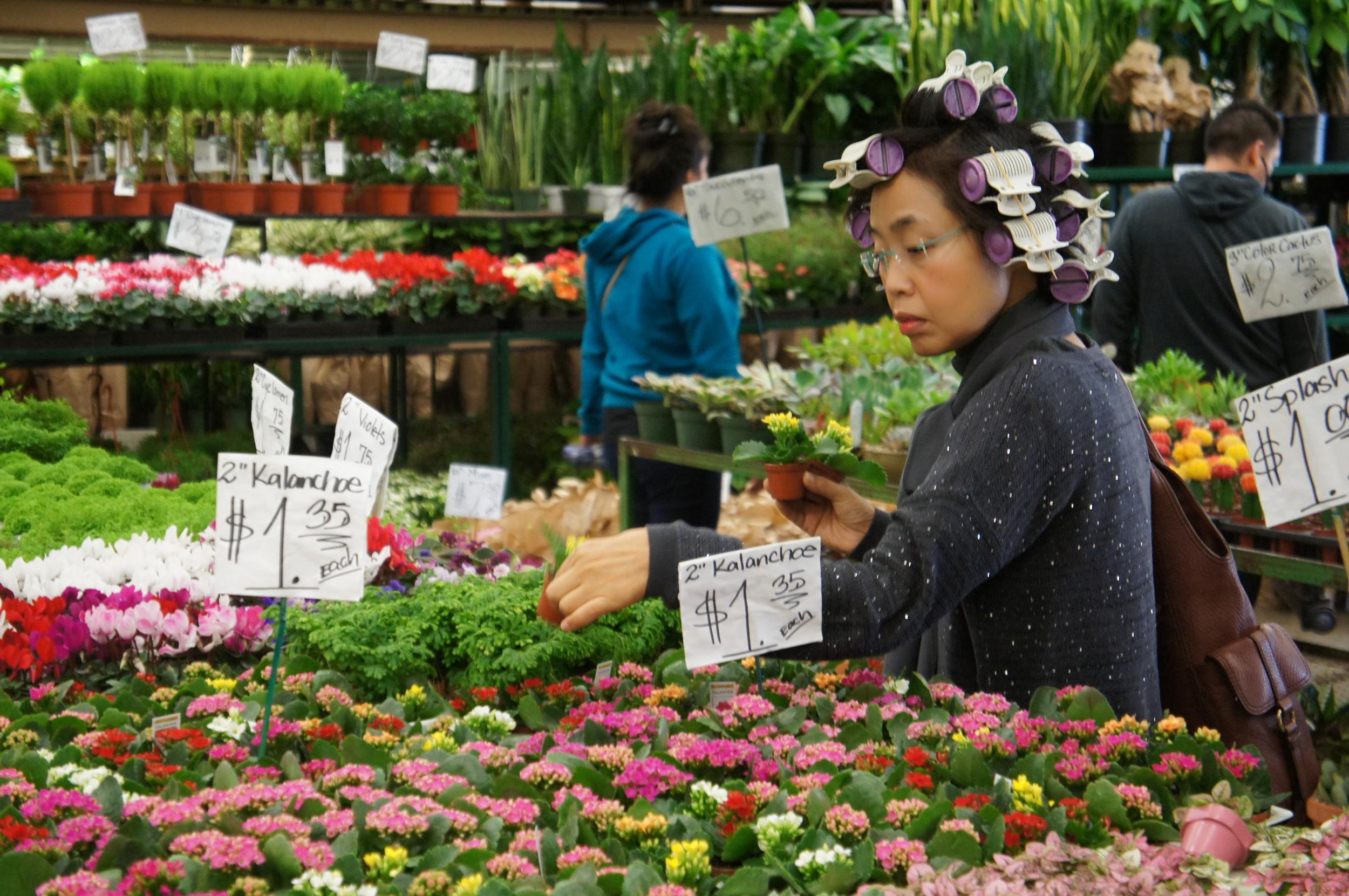 Lady wearing rollers in her hair looking at plants in Los Angeles flower market