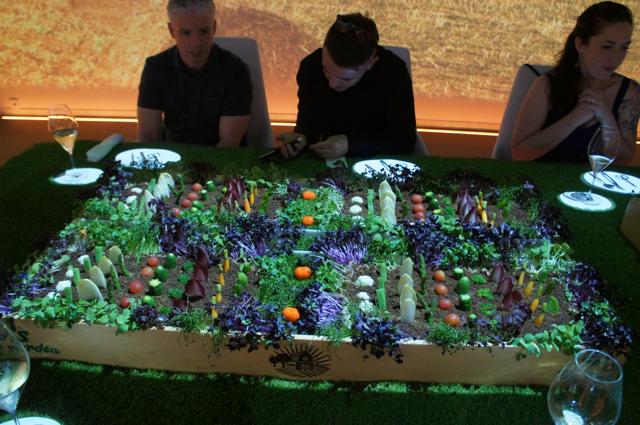 Edible garden at Sublimotion, Ibiza