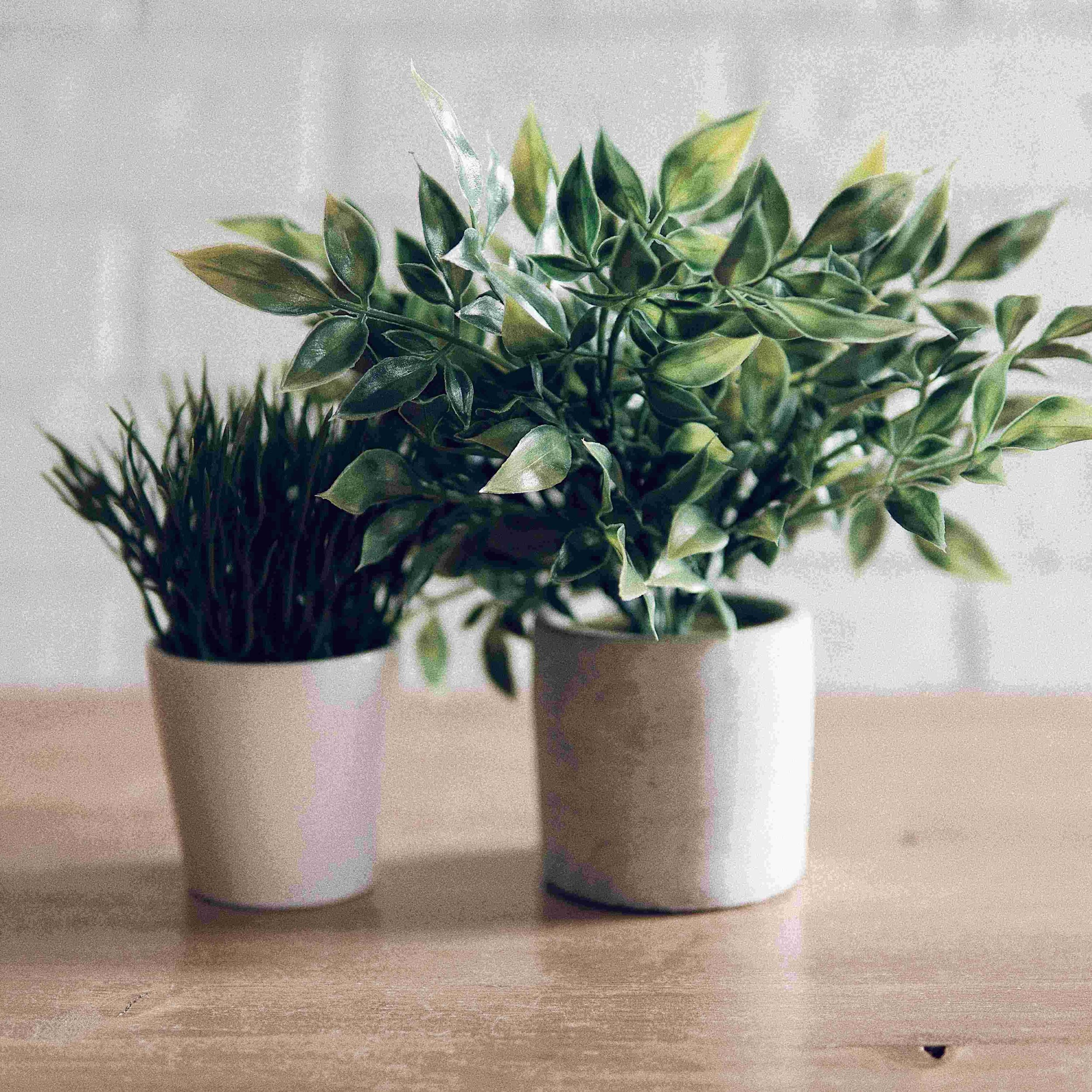 faux plants in pots for zero maintenance