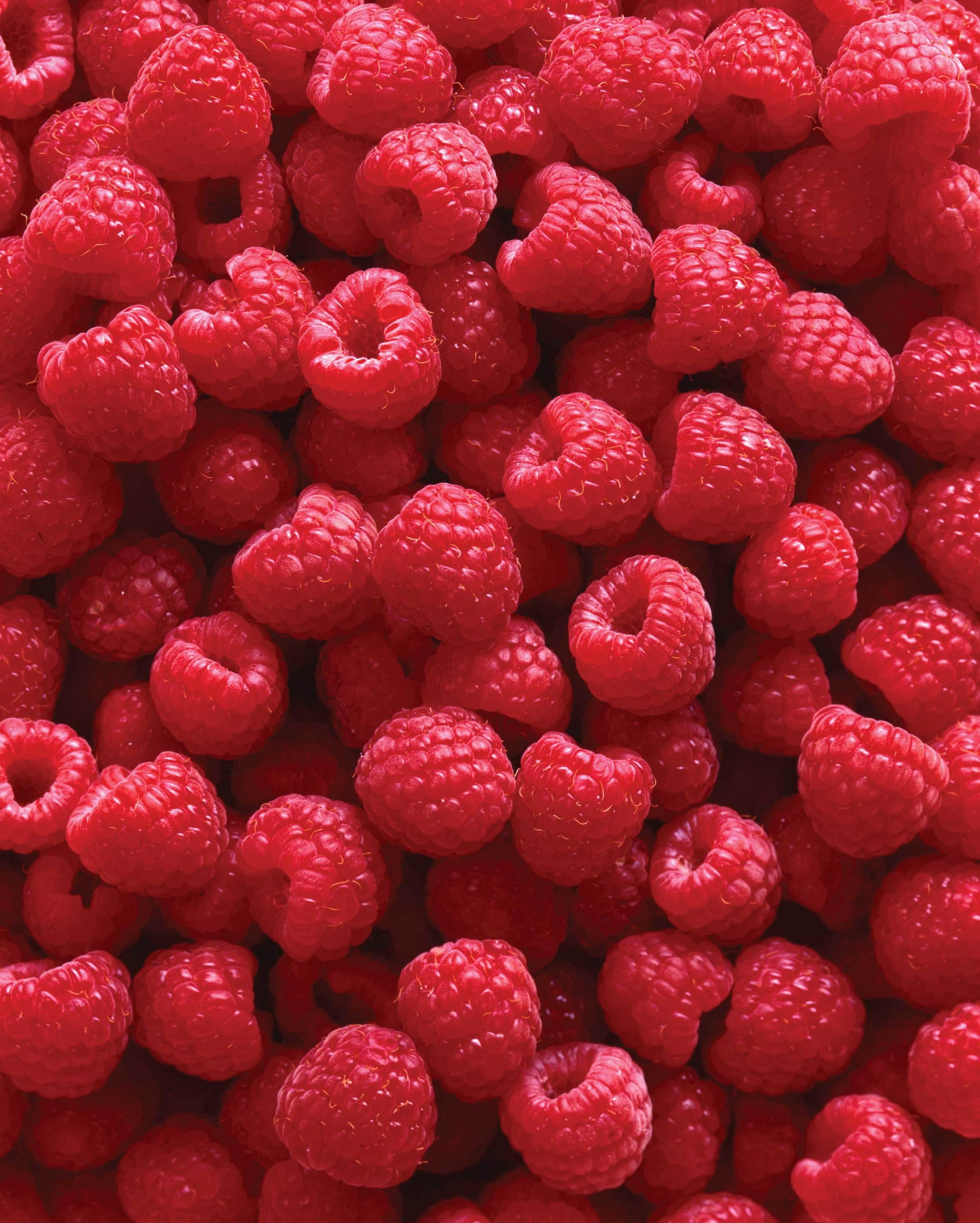 Fresh Raspberries Cover.jpg