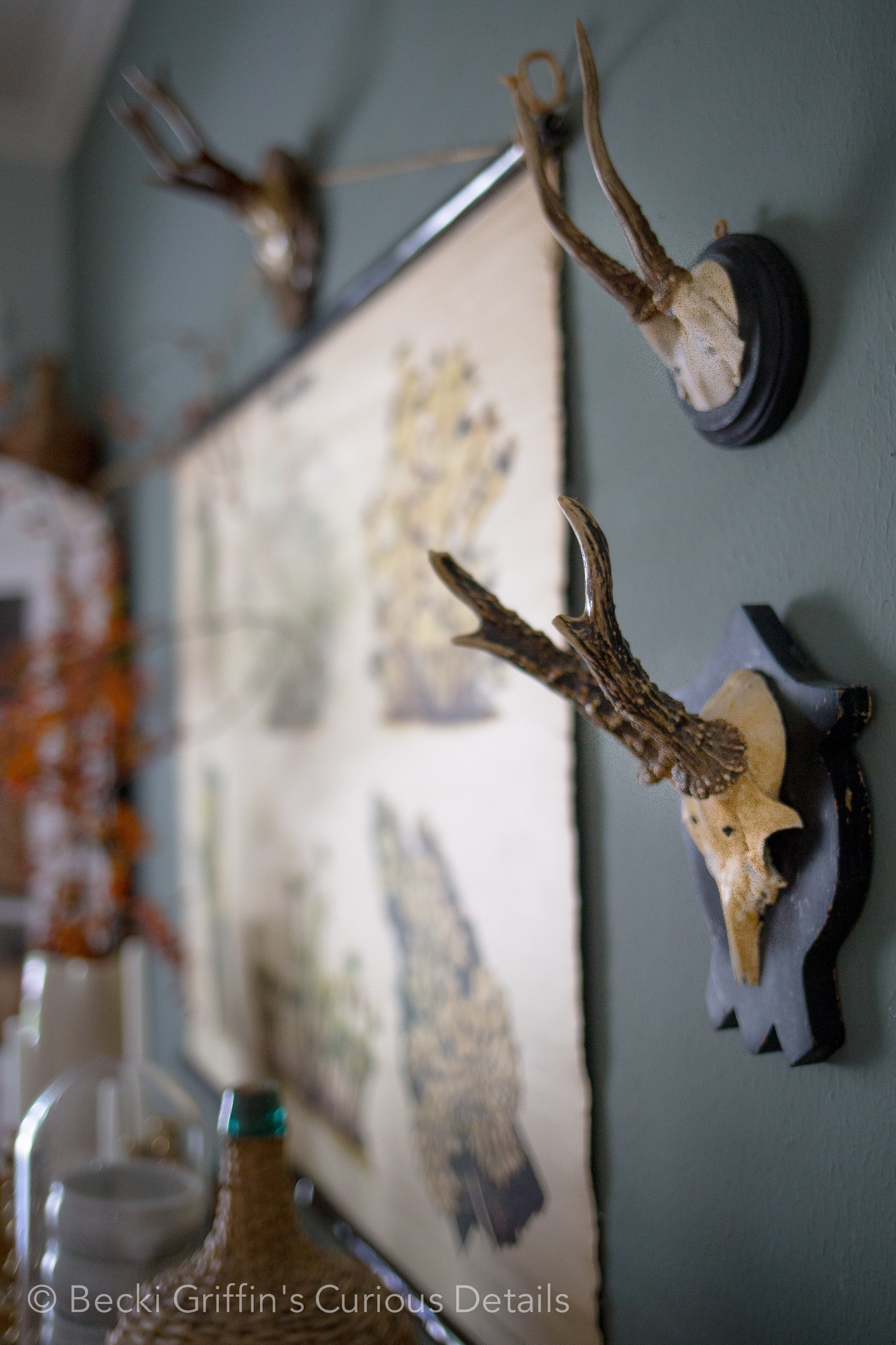 Becki Griffin's Curious Details Fall Dining Room-3.jpg