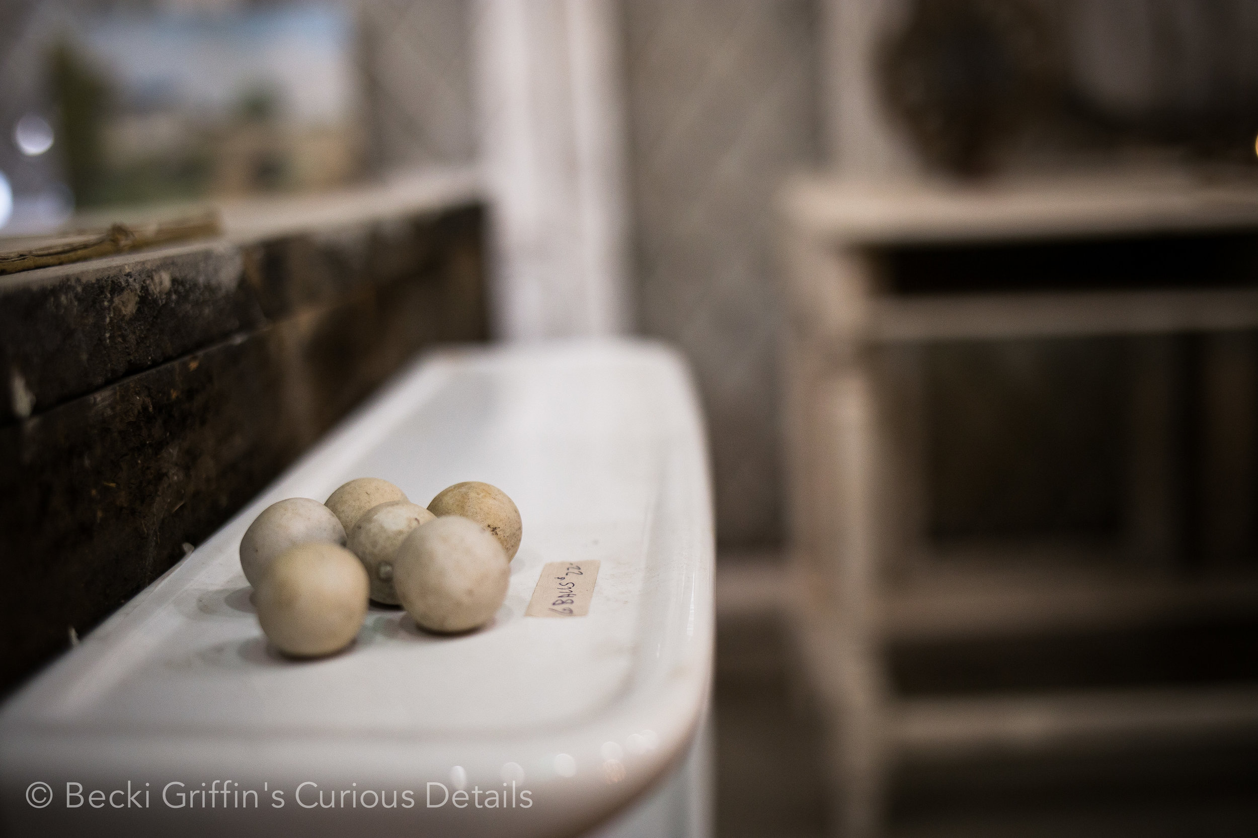 Becki Griffin's Curious Details_Carol Bolton Unloading Sale-26.jpg