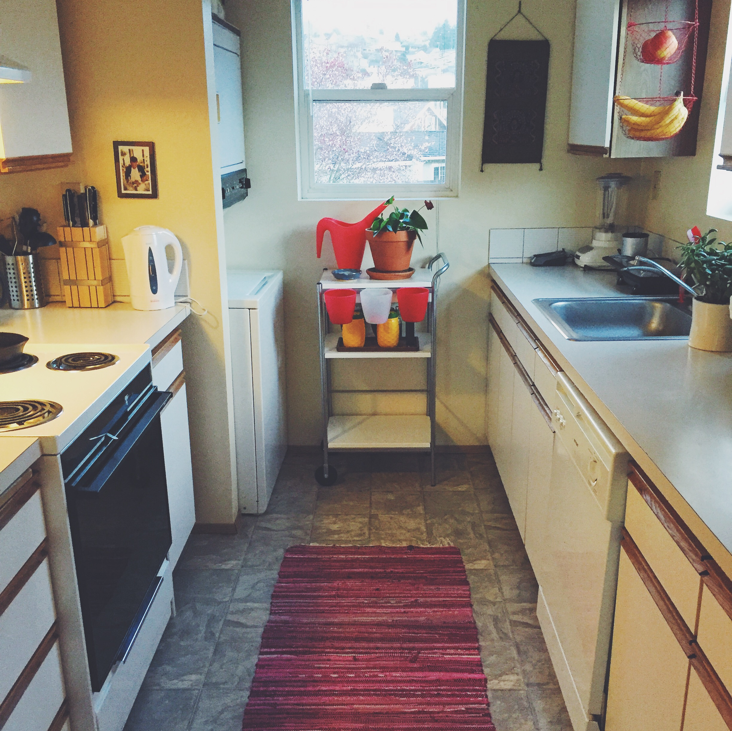 The kitchen is a huge win. Washer and dryer in the corner with OODLES of storage.