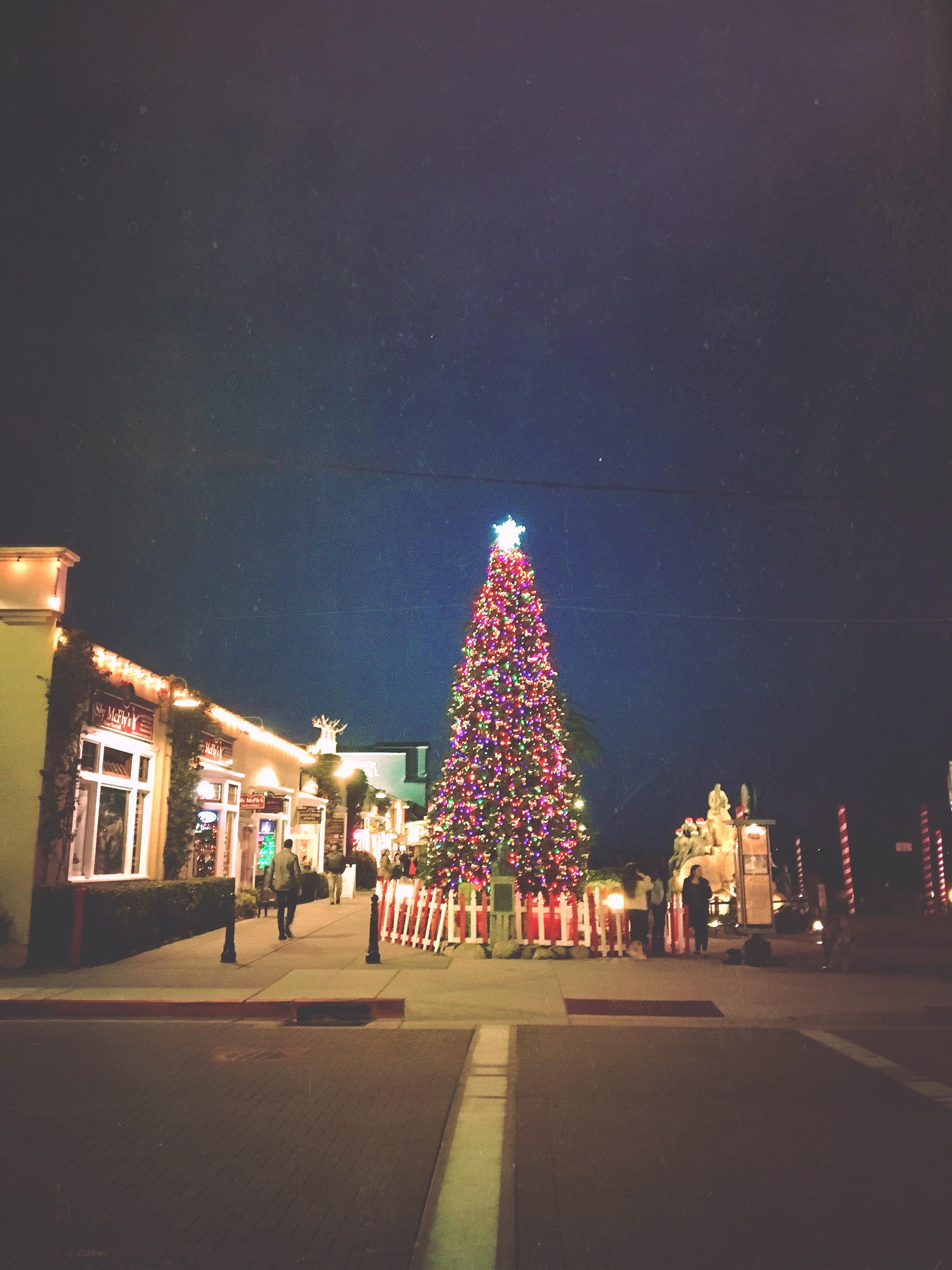 Photo Dec 21, 5 35 23 PM.jpg