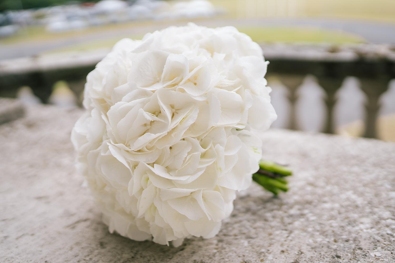 Carton-House-Wedding005.JPG