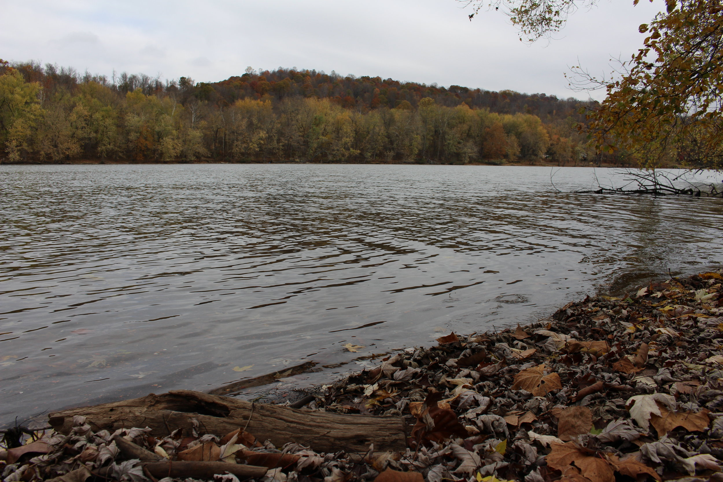 The Monongehela River near Carmichaels, PA