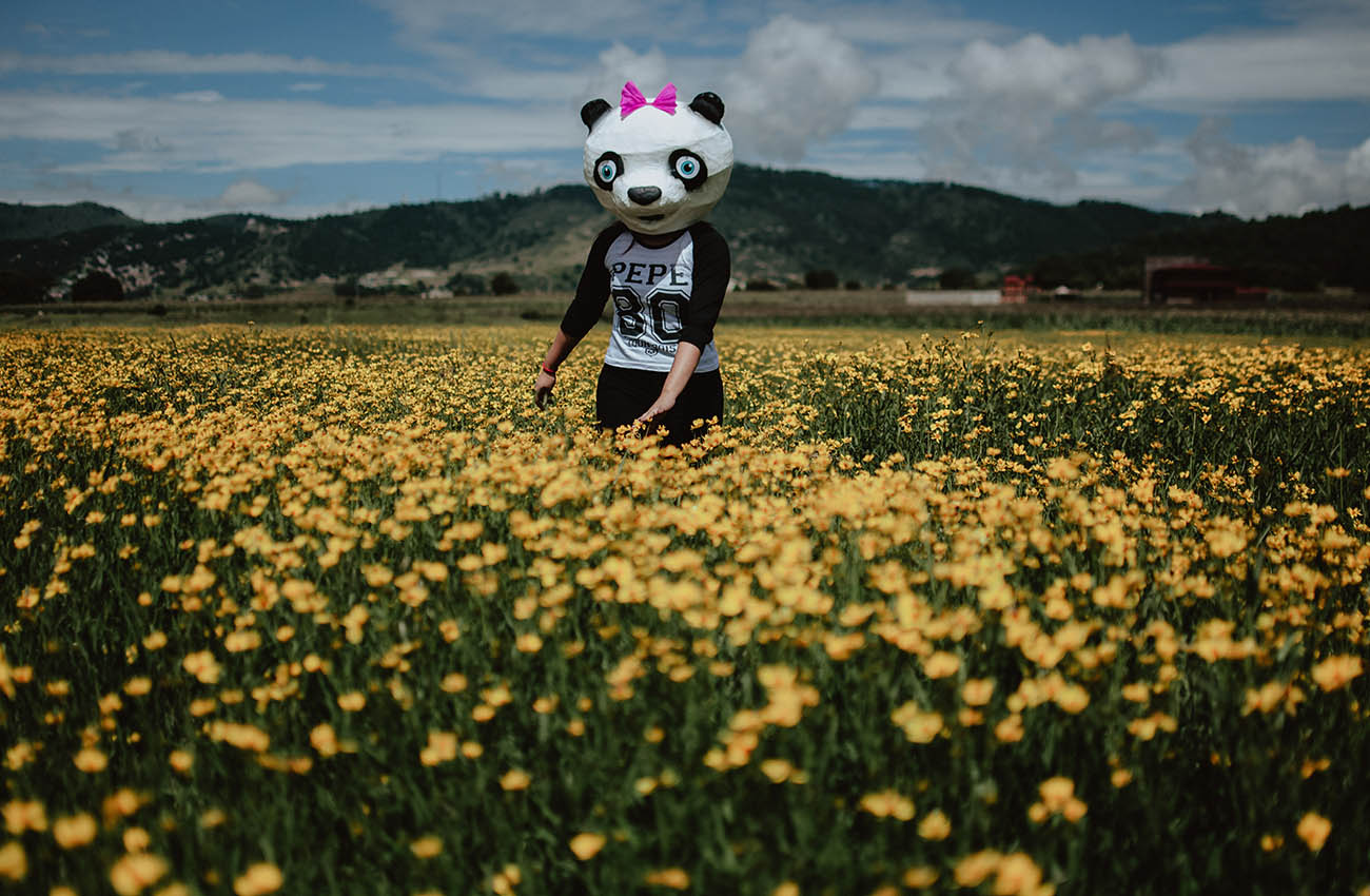 pamela-isael-preboda-akino-panda2.jpg