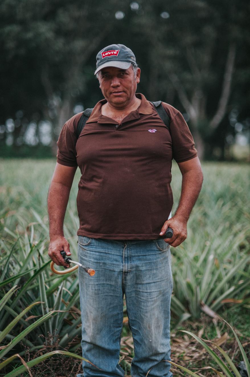 RAFAEL GARCÍA JUNCO - Rafael es propietario del rancho Las Hilamas, donde cultiva, entre otras cosas, piñas.En la aplicación de químicos prefiere usar productos Siwssmex para un mejor desempeño del trabajo y un buen rendimiento de sus trabajadores.
