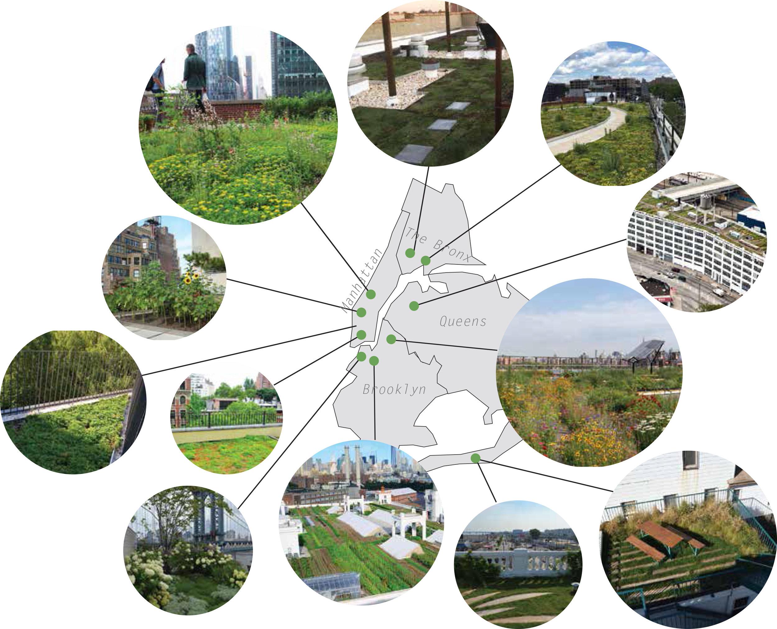 GreenRoofMap.jpg
