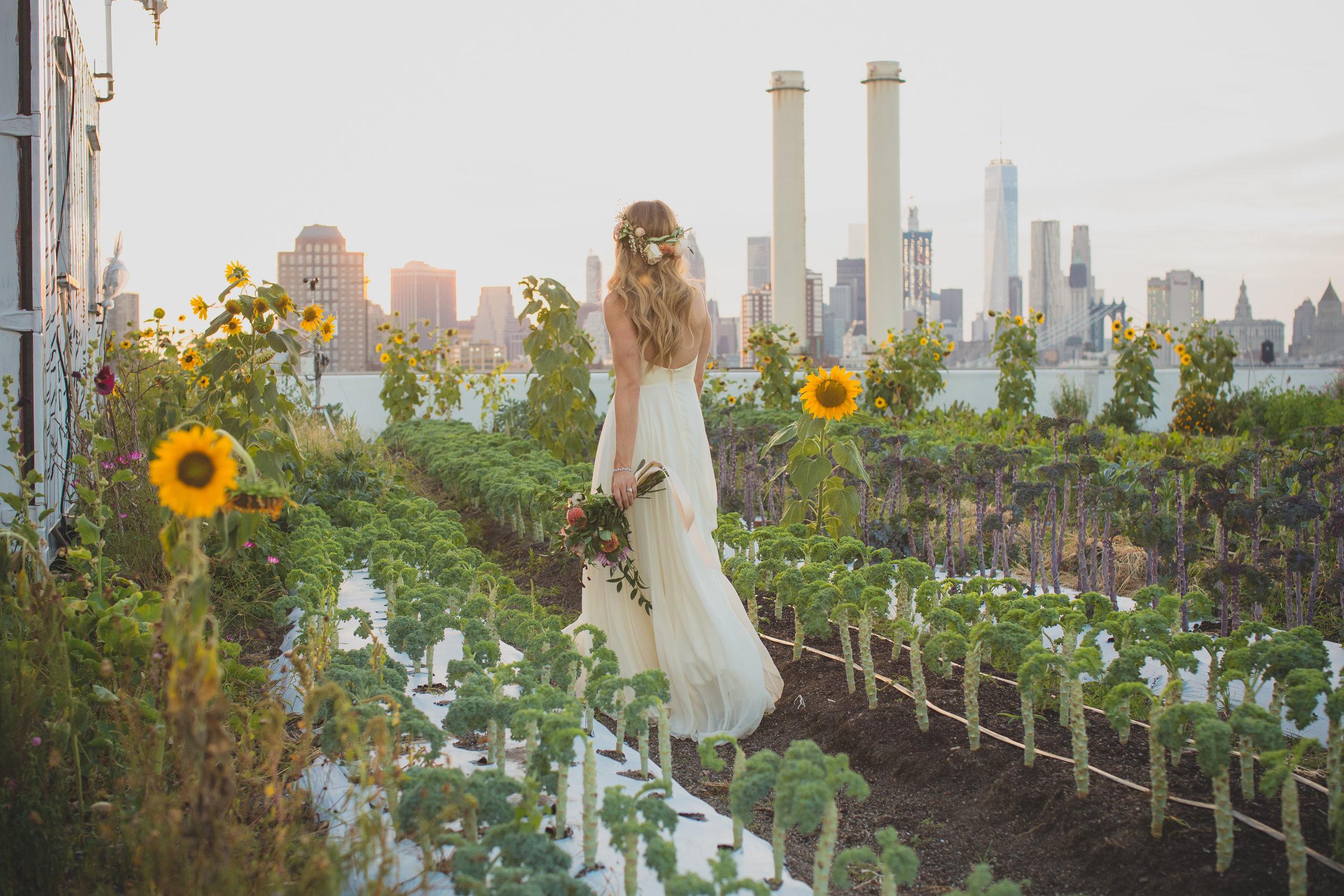 FARM WEDDINGS + REHEARSAL DINNERS -