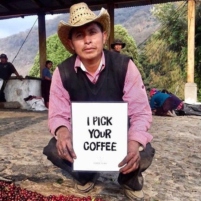"Hi coffee friends! Long time, no posts... We have been working on exciting new things... But missed sharing about us with you guys... ⠀⠀⠀⠀⠀⠀⠀⠀⠀ We wanted use this first post to give a shoutout to some of the most hardworking coffee pickers this season! We value their work so much and its thanks to their amazing skills that we are able to have great coffees to offer. ⠀⠀⠀⠀⠀⠀⠀⠀⠀ Meet Mario Sales. He has been working with us every picking season for 6 years. Mario is part of our ""Special Pickers Team"". This is a group of our most experienced pickers whom meticulously pick out only the ripest and juiciest cherries. ⠀⠀⠀⠀⠀⠀⠀⠀⠀ We owe so much of our coffee quality to them!"