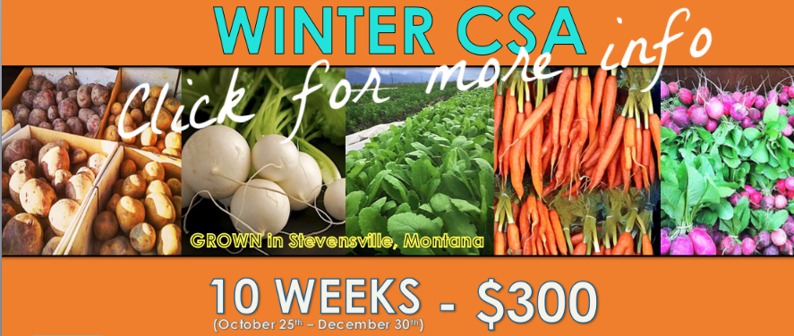 Sure was a pleasure to feed 40 shareholders this winter.  We aim to grow enough food to more than double membership in 2018, and extend the winter CSA another month into January!