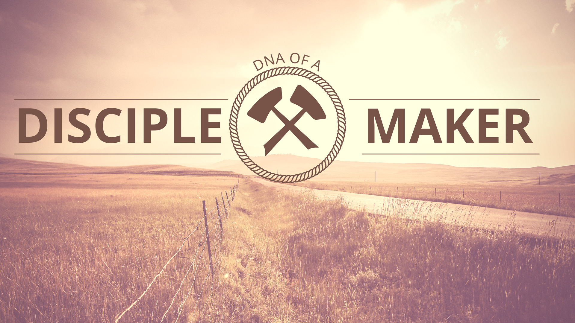 DNA of a Disciple Maker.png