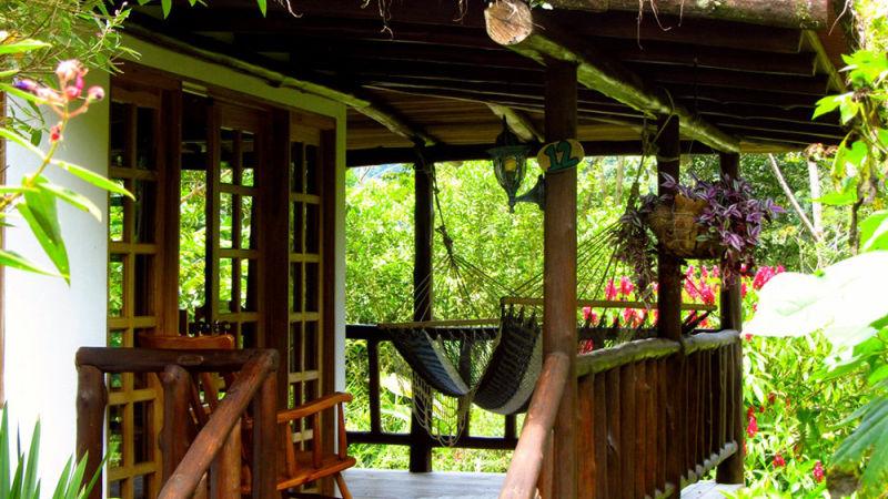 hammock photo new.jpg
