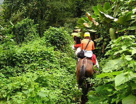 horseback ride jgp.jpg