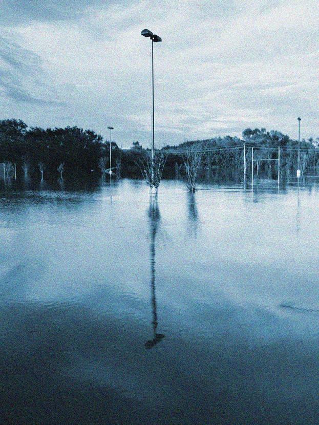 after the rains camenoisesm.jpg