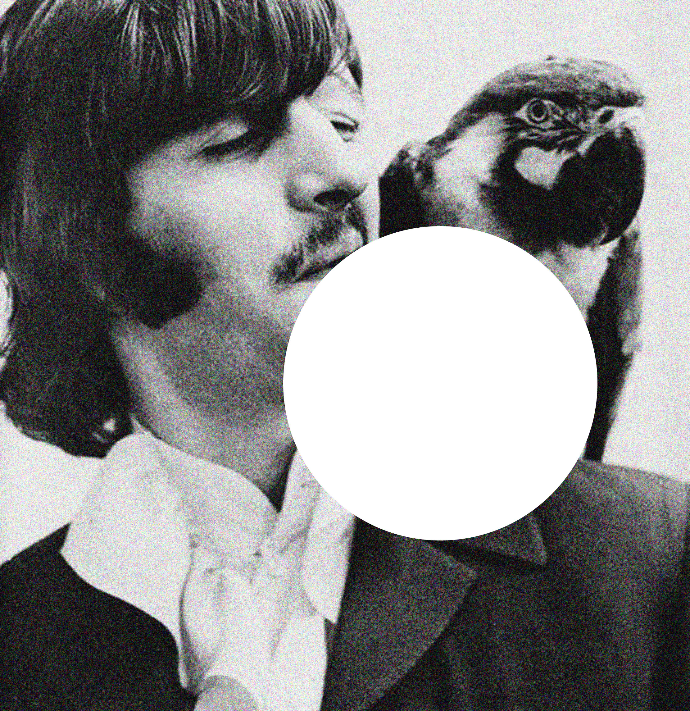 ringo and the parrot.jpg