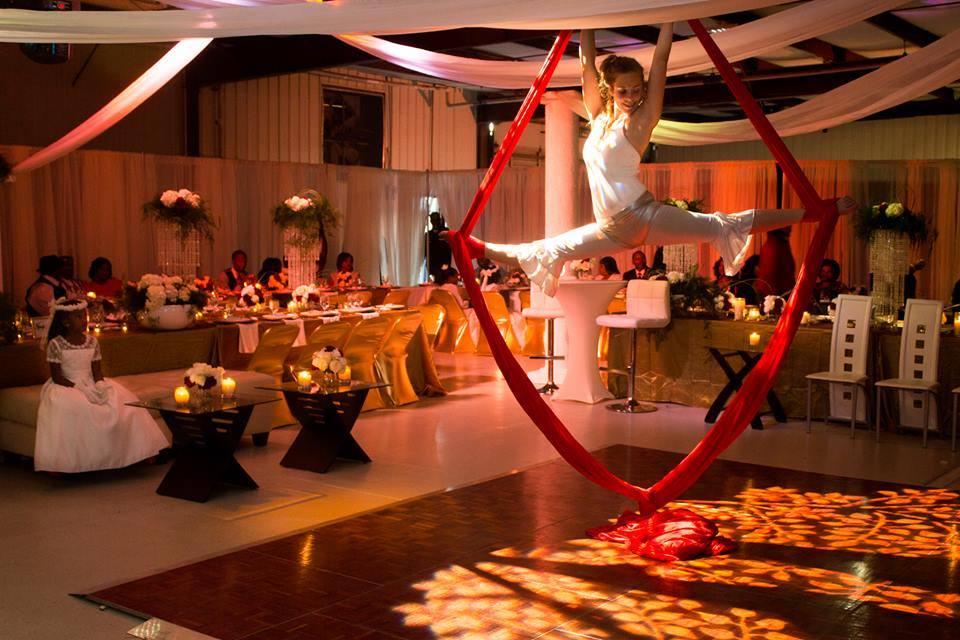 Aerial Silks- Wedding Performance.jpg