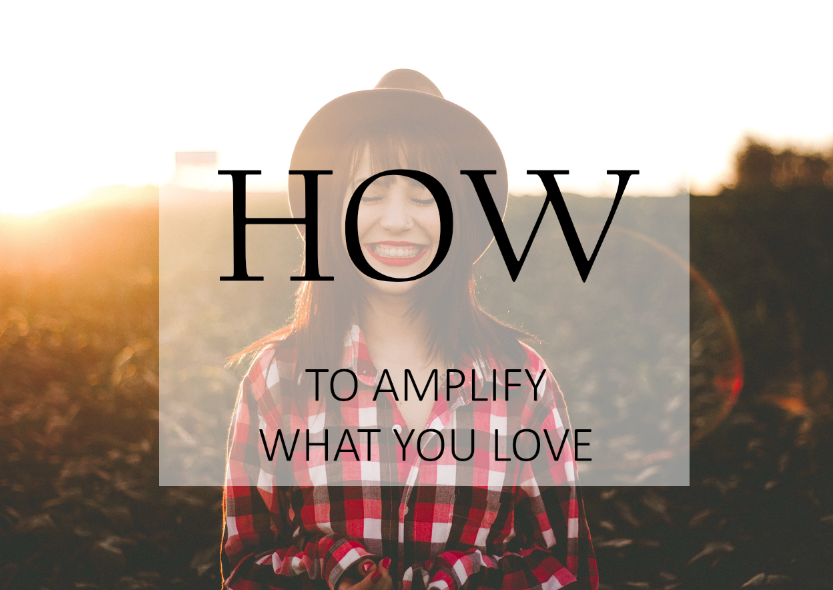 how_to_amplify_what_you_love.png