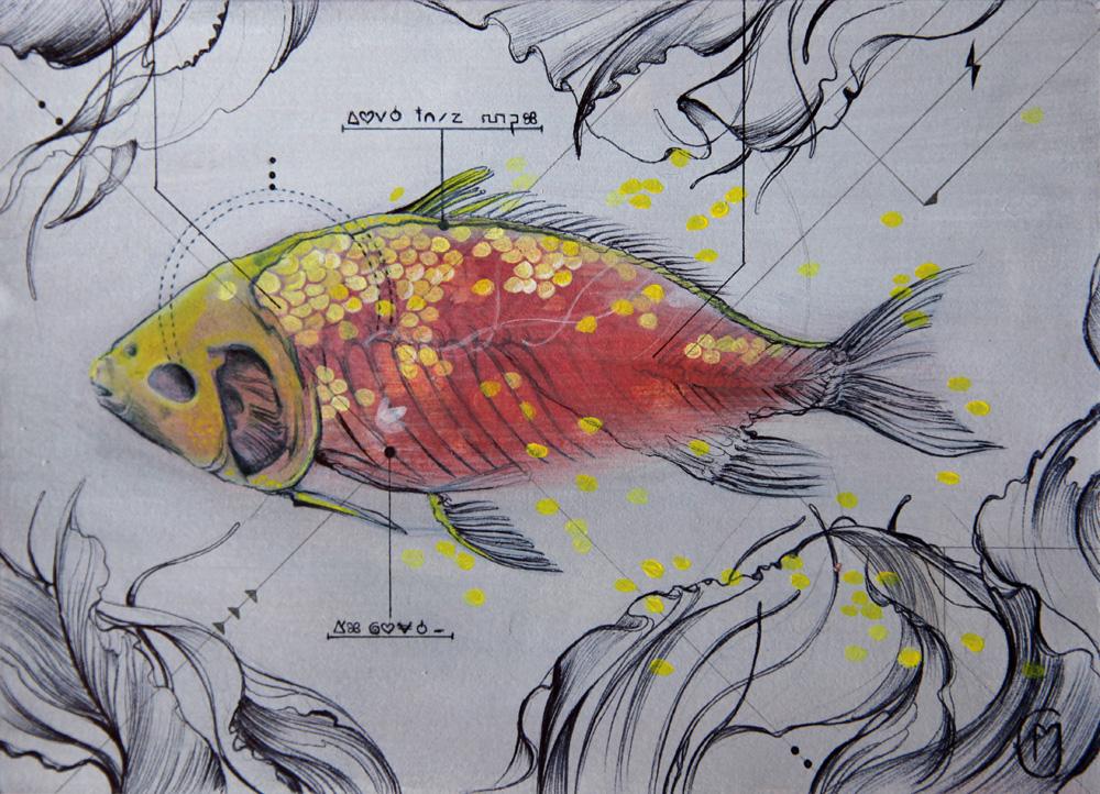 Fish_total_WEB.jpg