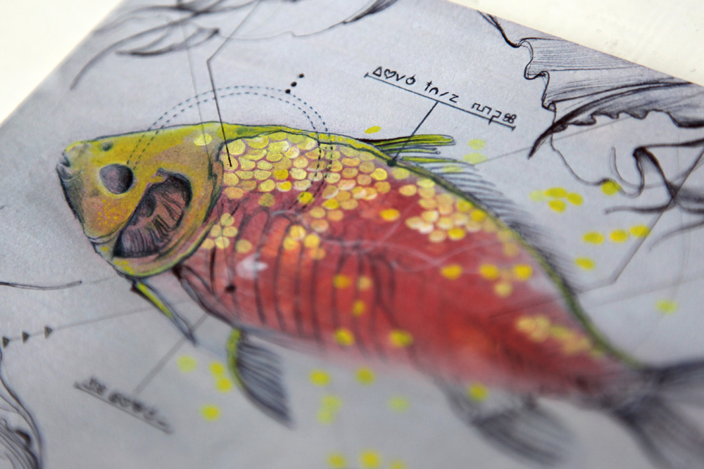 Fish_head_Marjolein_Caljouw_web.jpg