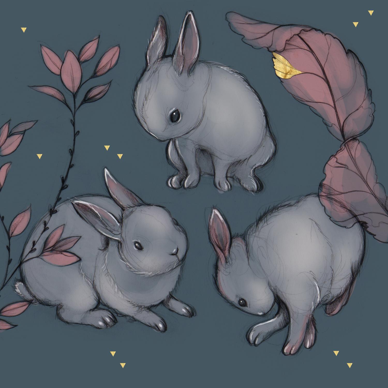 Bunnies_insta_web.jpg