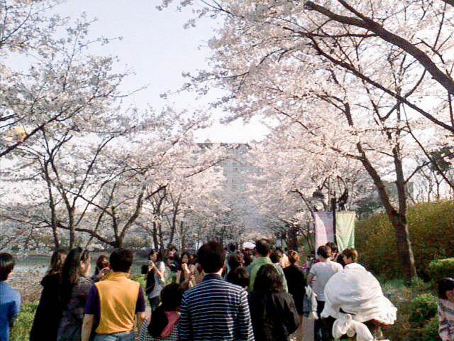 Korea Blog-32.jpg
