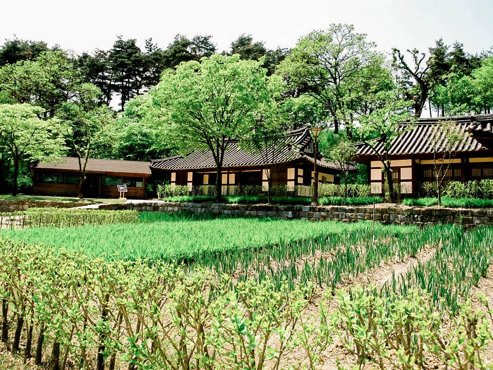 Korea Blog-39.jpg