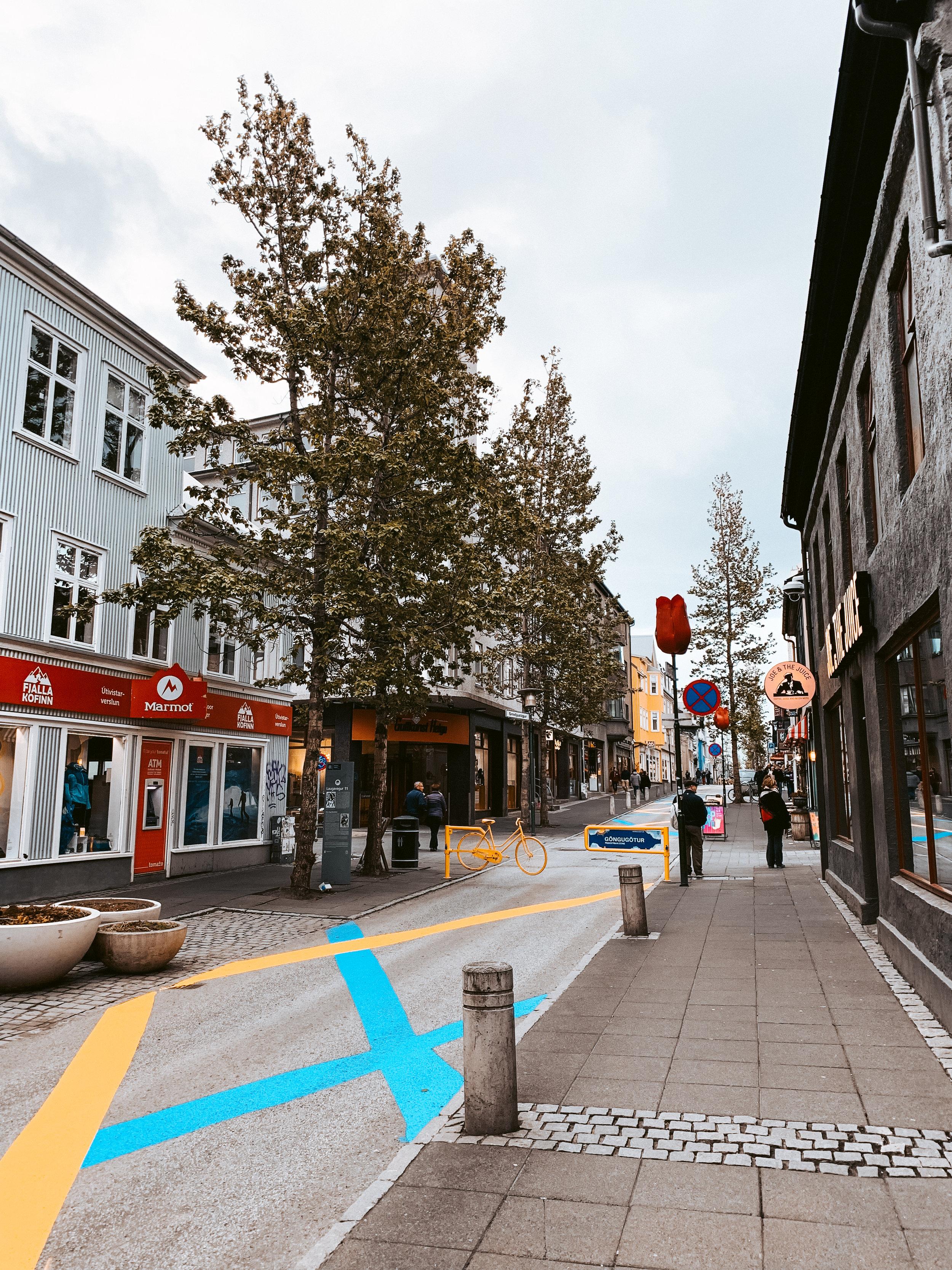 LSS Downtown Reykjavik Iceland