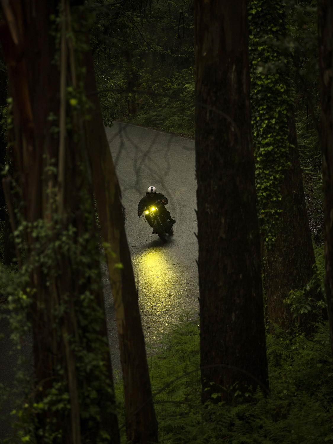 El Solitario's co-founder  Valeria Libano  drives the  Malo/Bueno  through  Santa María de Oia forest  on May 1, 2015, in Galician  Rias Baixas , Spain. Ex commodity trader  David Borrás and his wife fashion designer Valeria Líbano founded El Solitario Motorcycles as a personal bet to offer their own style of conceiving motorcycles and the fashion market related with them. Malo/Bueno is the customization of a 1200cc  Harley Davidson Sportster.  Cast sculptors, a community trader and a musician have something in common: they have made the passion of customizing motorbikes their own business. Valtoron Sculptured Motorcycles, Café Racer Obsession and El Solitario Motorcycles are the dreams-come-true of the Delgado Brothers, Federico Ruiz and David Borrás.