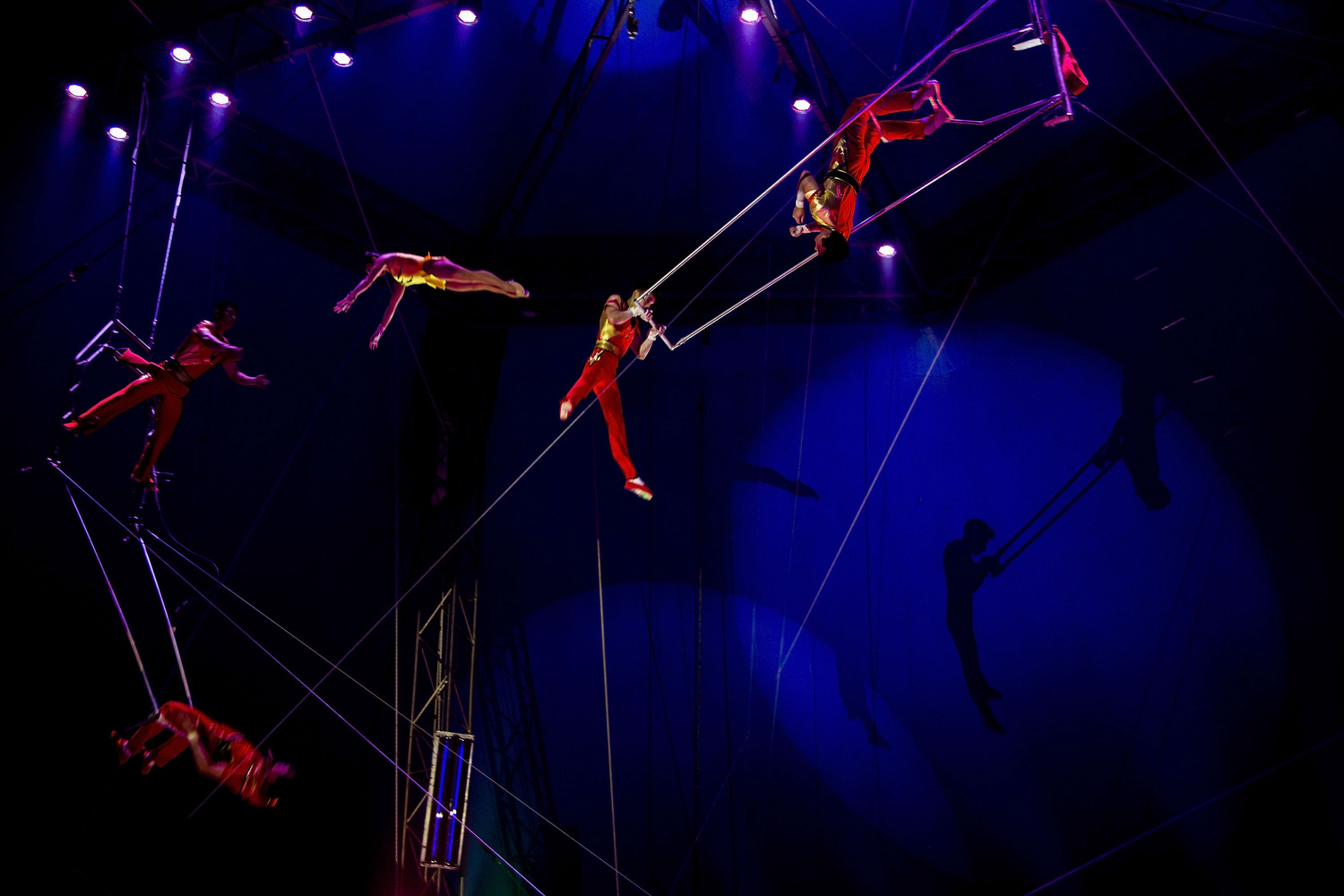 Trapeze   artist s of the  Pyongyang National Circus  perform their show at  Gran Circo Mundial  on November 28, 2015 in Madrid, Spain. On the world of  flying  trapeze art, this 10-artists company commits on their contract a male-four-mortal-jump (performed by Kim Chol Guk) and a female-three one (performed by Hwang Kum Hui).  Gran Circo Mundial  is a 40 years-old Spanish  circus  where  famil y lifes and stories have mixed together across the time. From the  trapeze  artists of the  Pyongyang National Circus  to the  Rampin  family descendants,  clown s,  magician s or aerial  permormer s share the  stage  and part of their private lifes. Their show was running inMadrid in Autumn 2015.