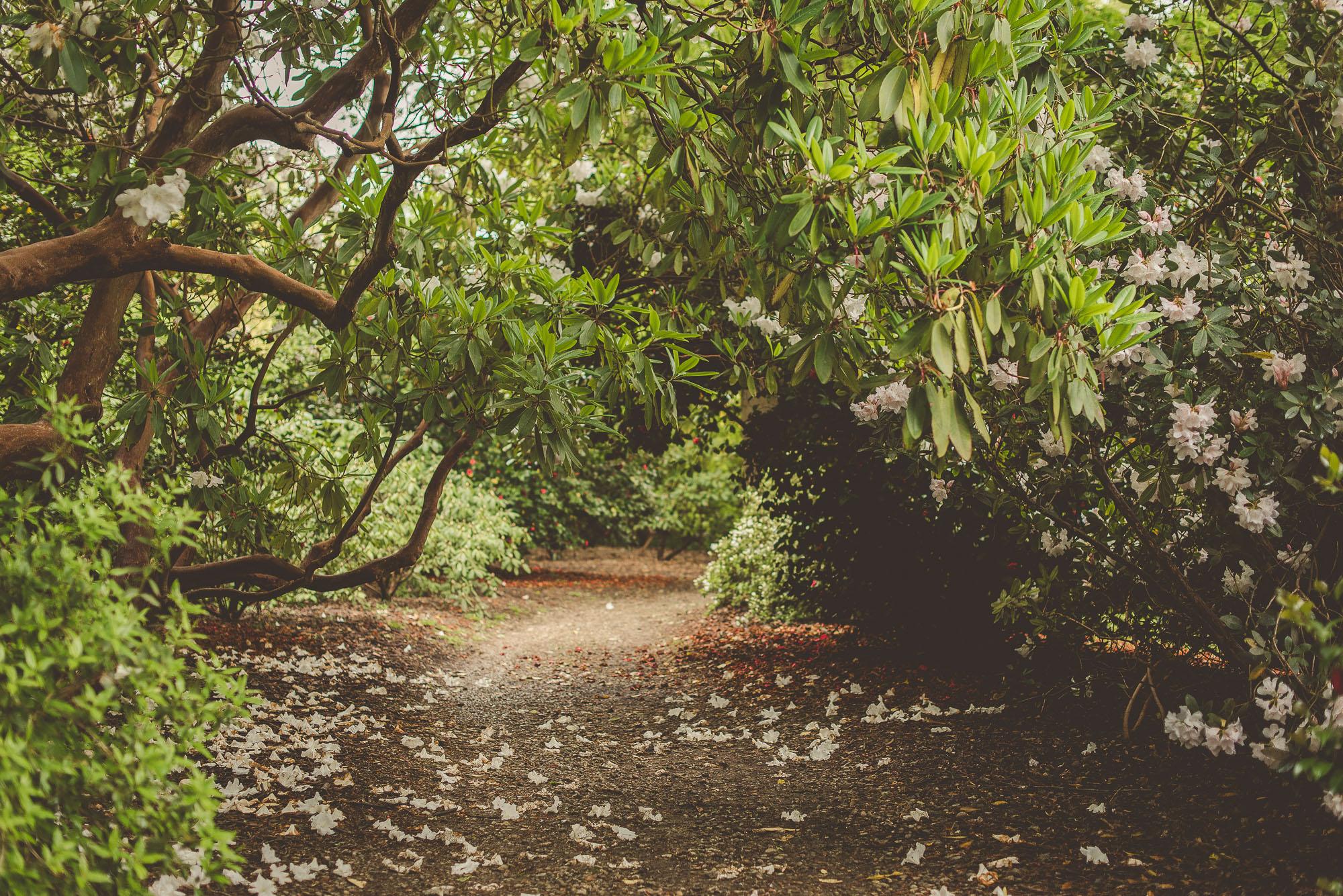Country Living Interior Blogger, Sheffield Park & Garden