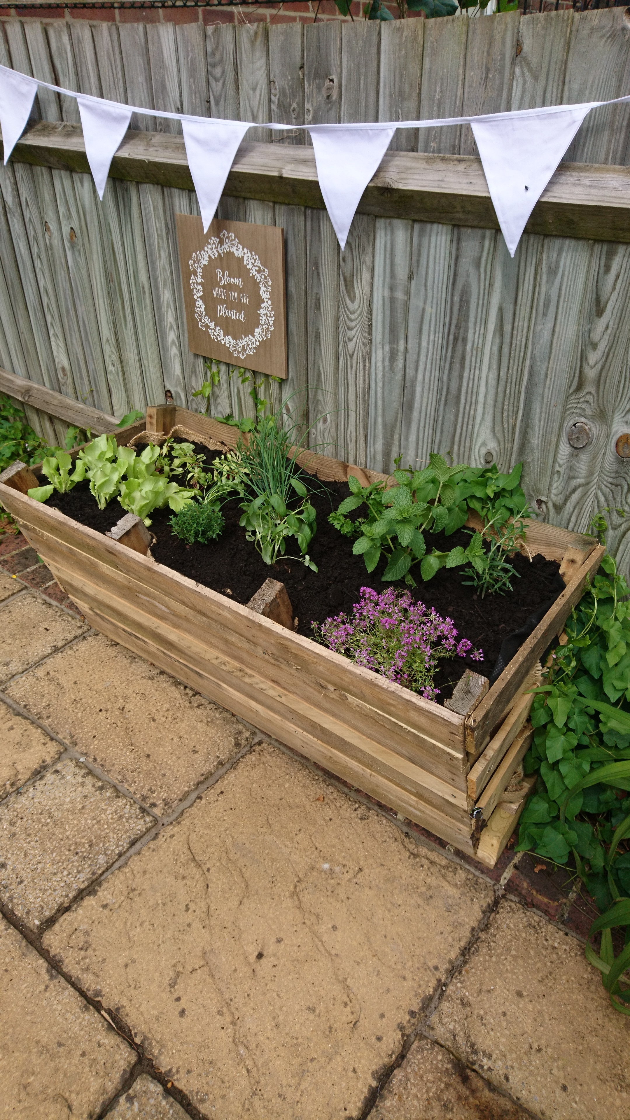 herb garden idea brighton