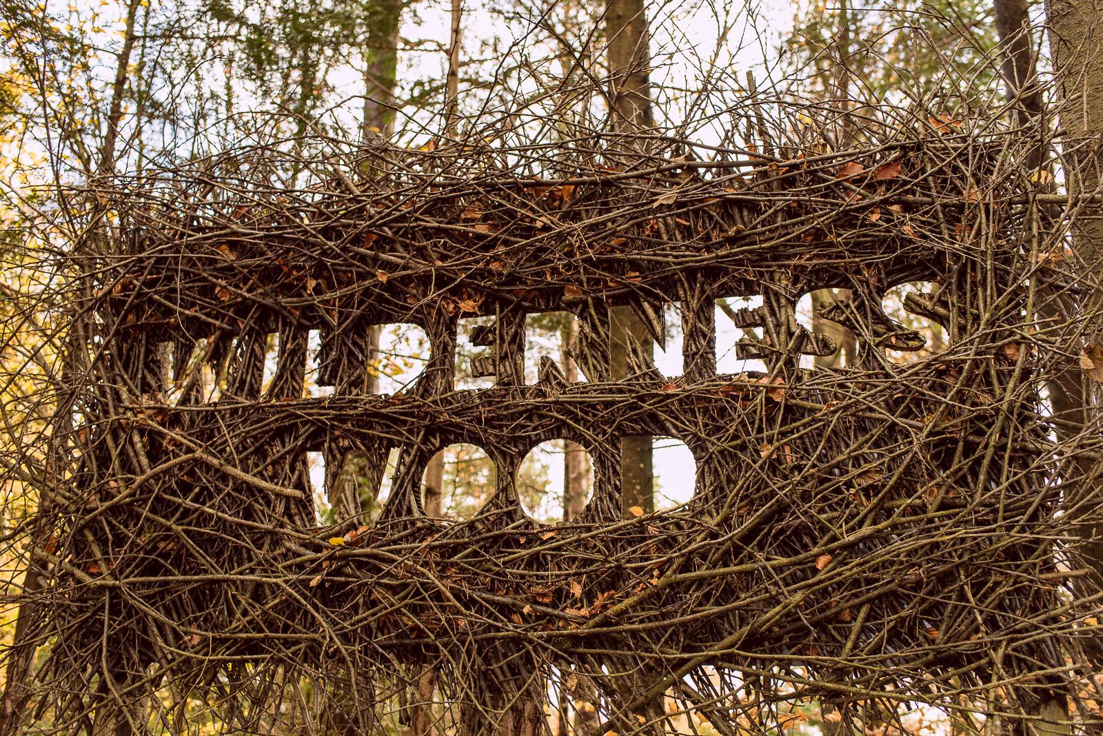 wilderness woods hadlow down sussex
