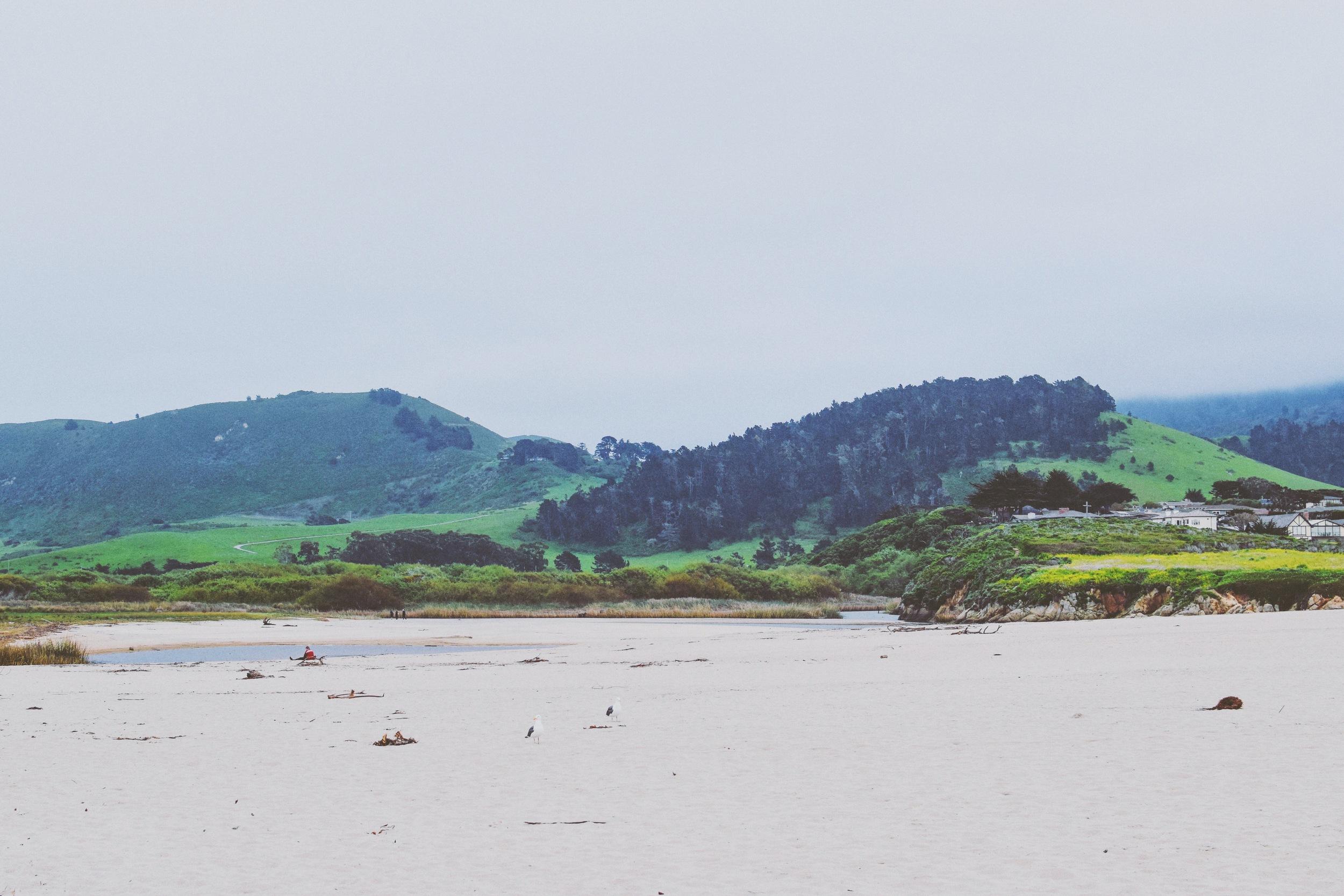 Carmel Beach 4.jpg