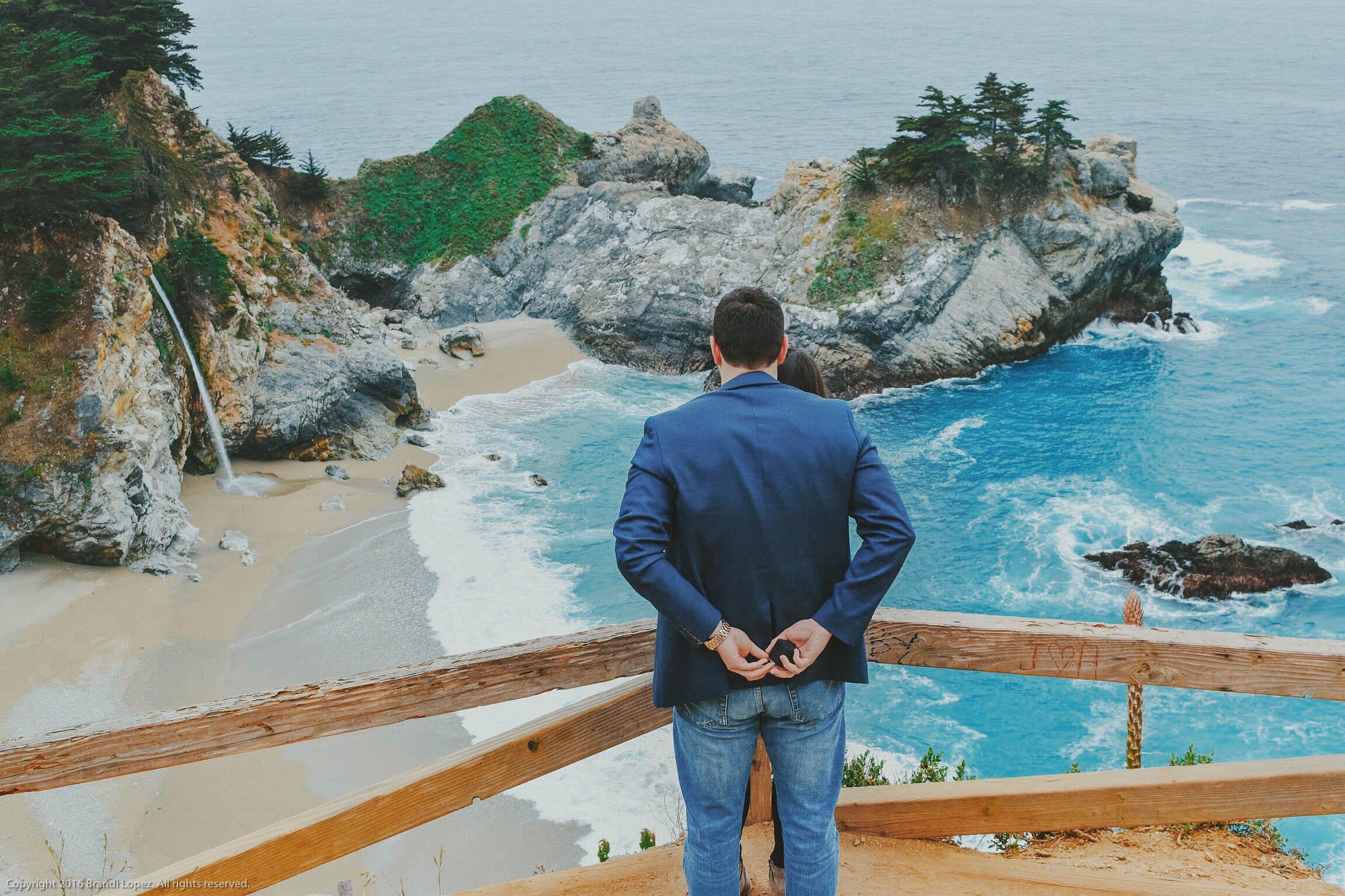 Big Sur Proposal 3.jpg
