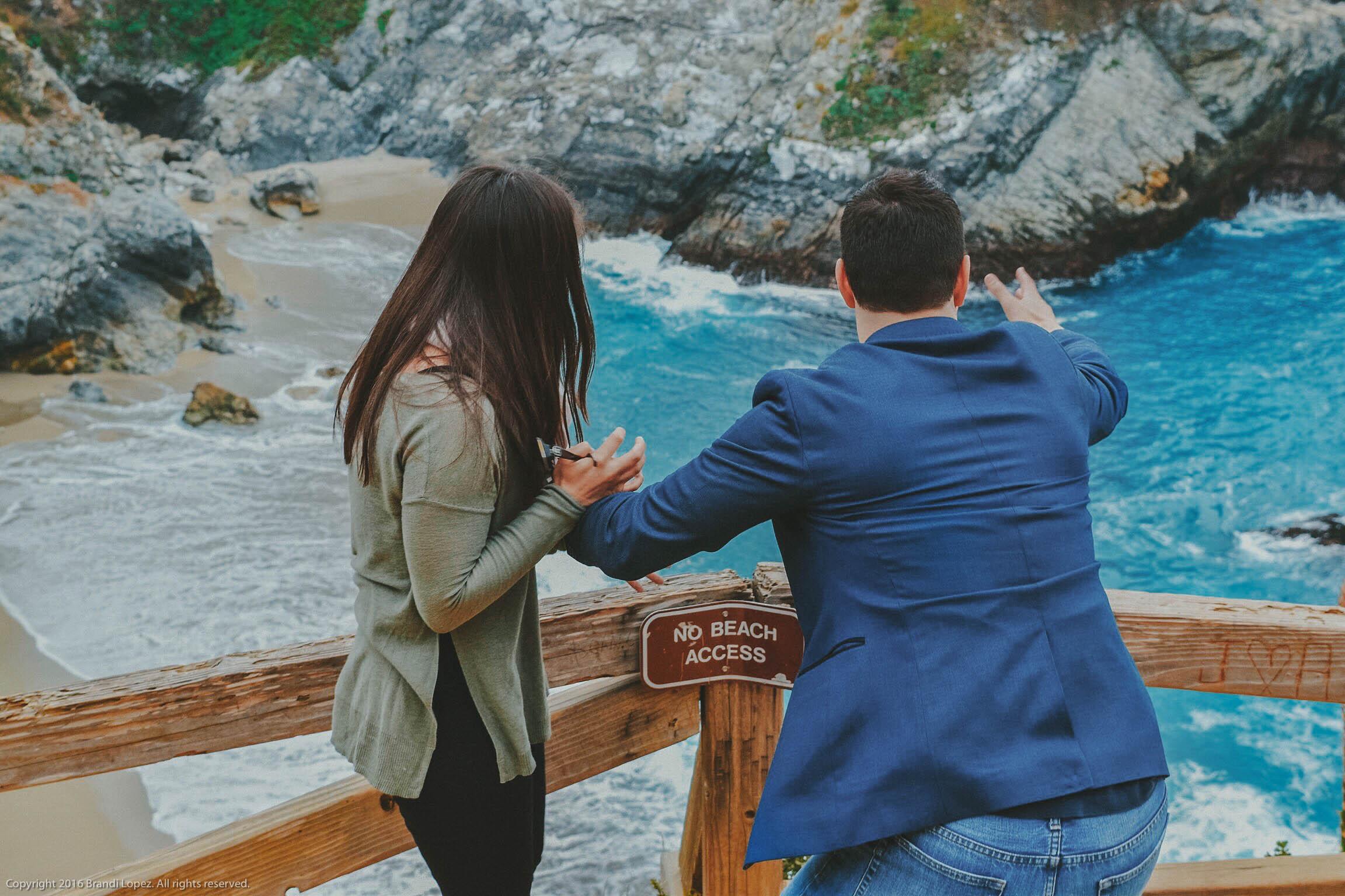 Big Sur Proposal 8.jpg