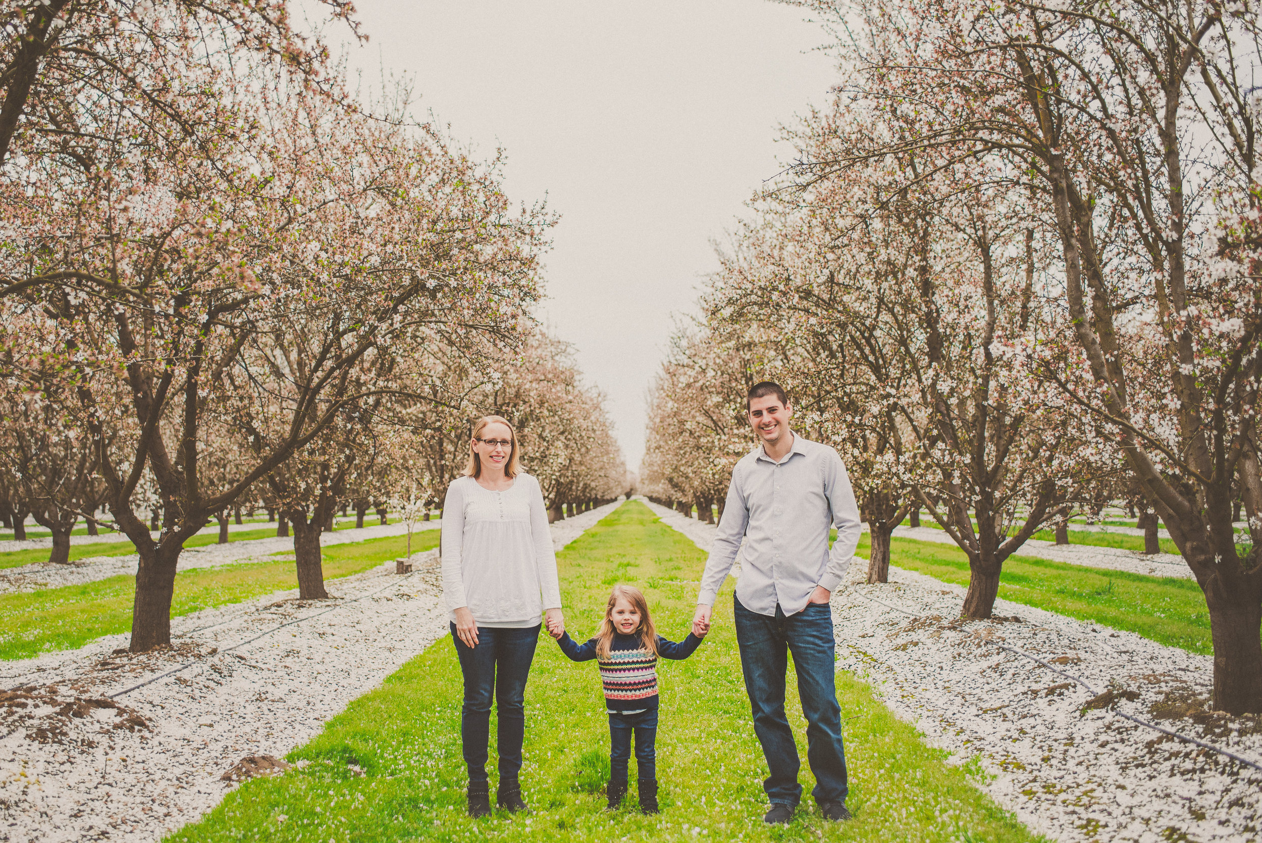 Almond Blossom Family Portraits-20.jpg