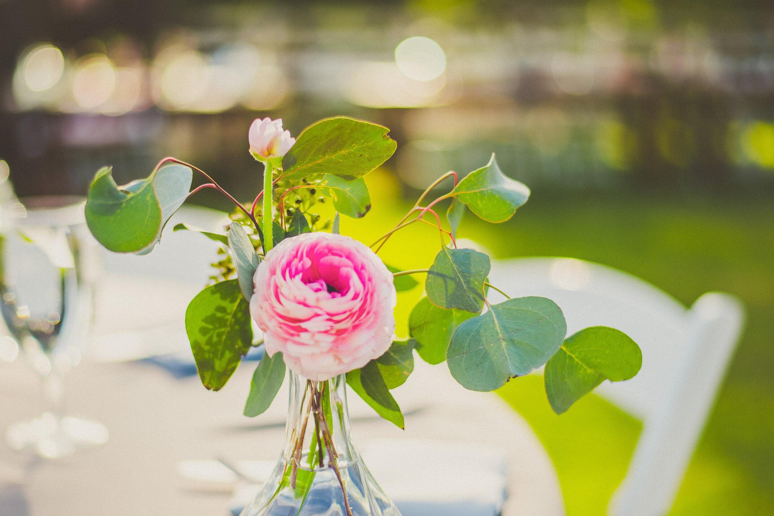 Demiglio Wedding - Reception-20.jpg