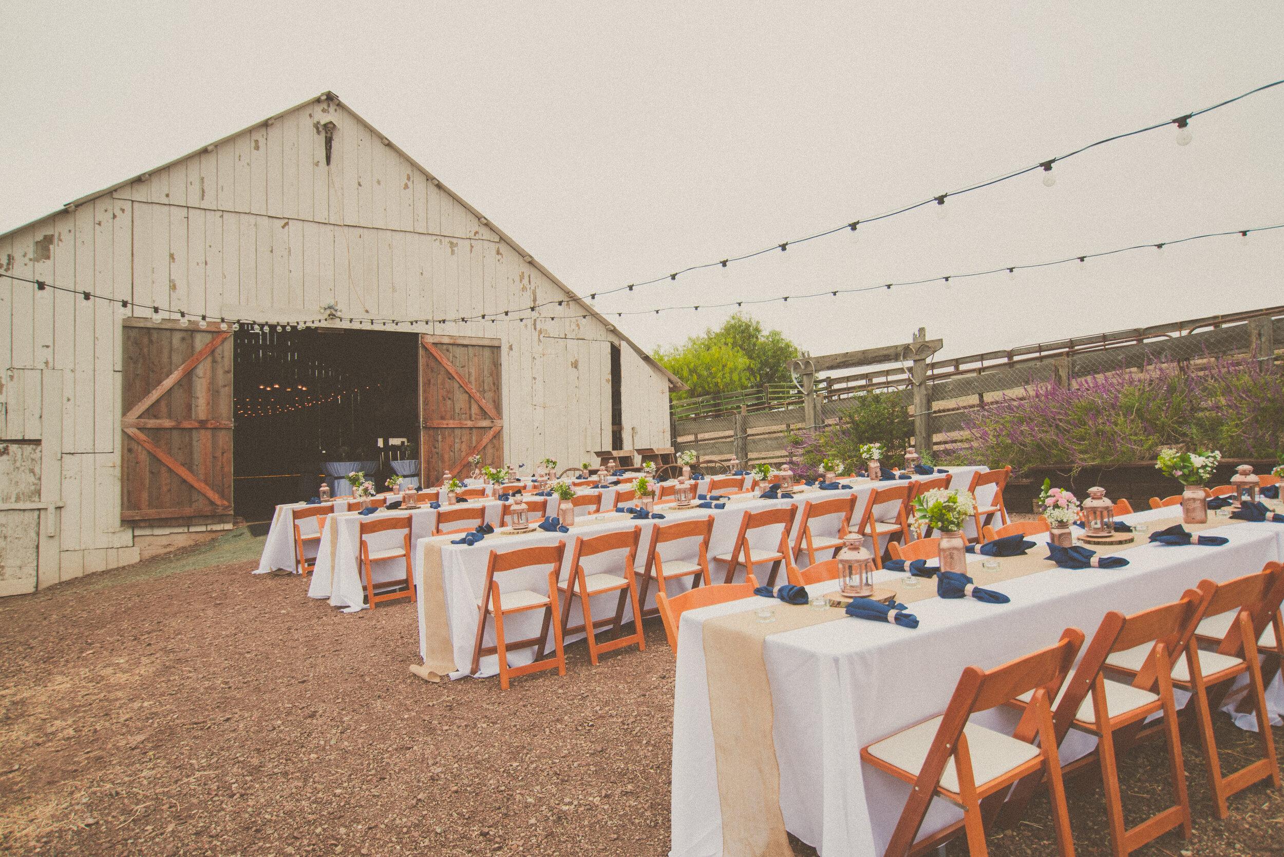 Prouty Wedding - Reception-5.jpg